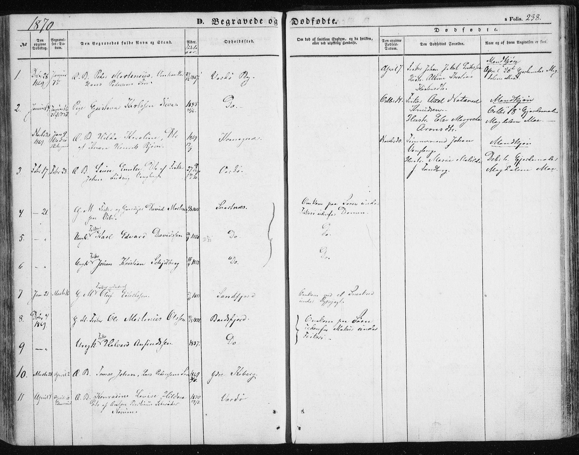 SATØ, Vardø sokneprestkontor, H/Ha/L0004kirke: Ministerialbok nr. 4, 1862-1871, s. 238