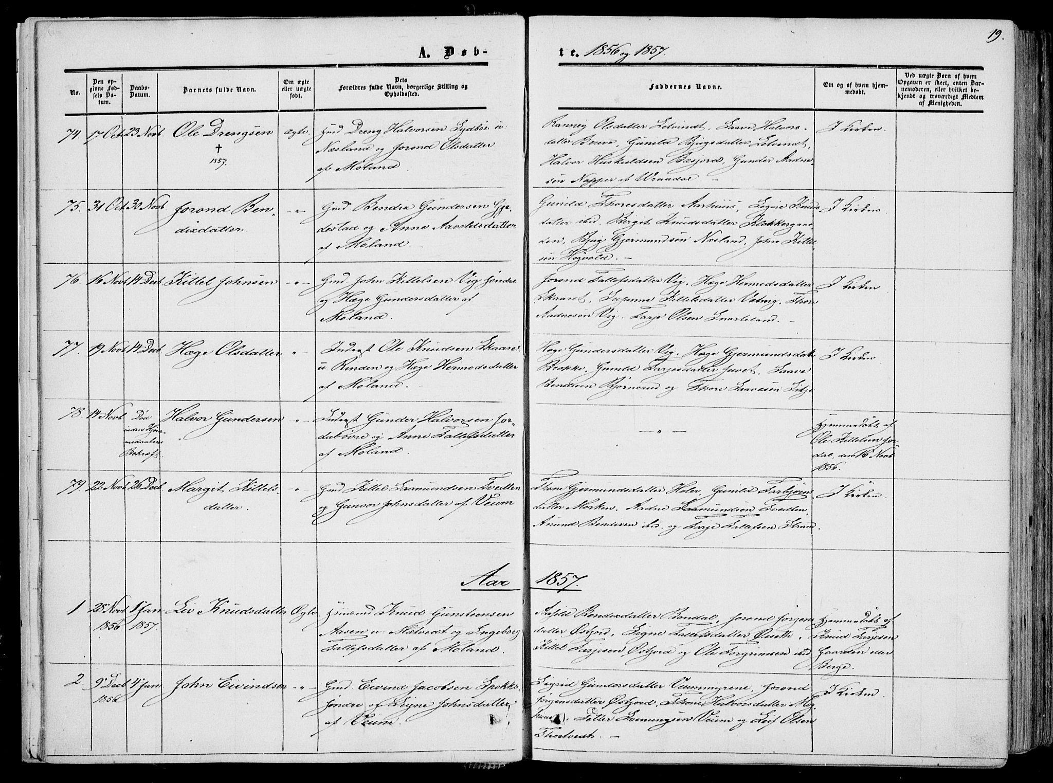 SAKO, Fyresdal kirkebøker, F/Fa/L0005: Ministerialbok nr. I 5, 1855-1871, s. 19