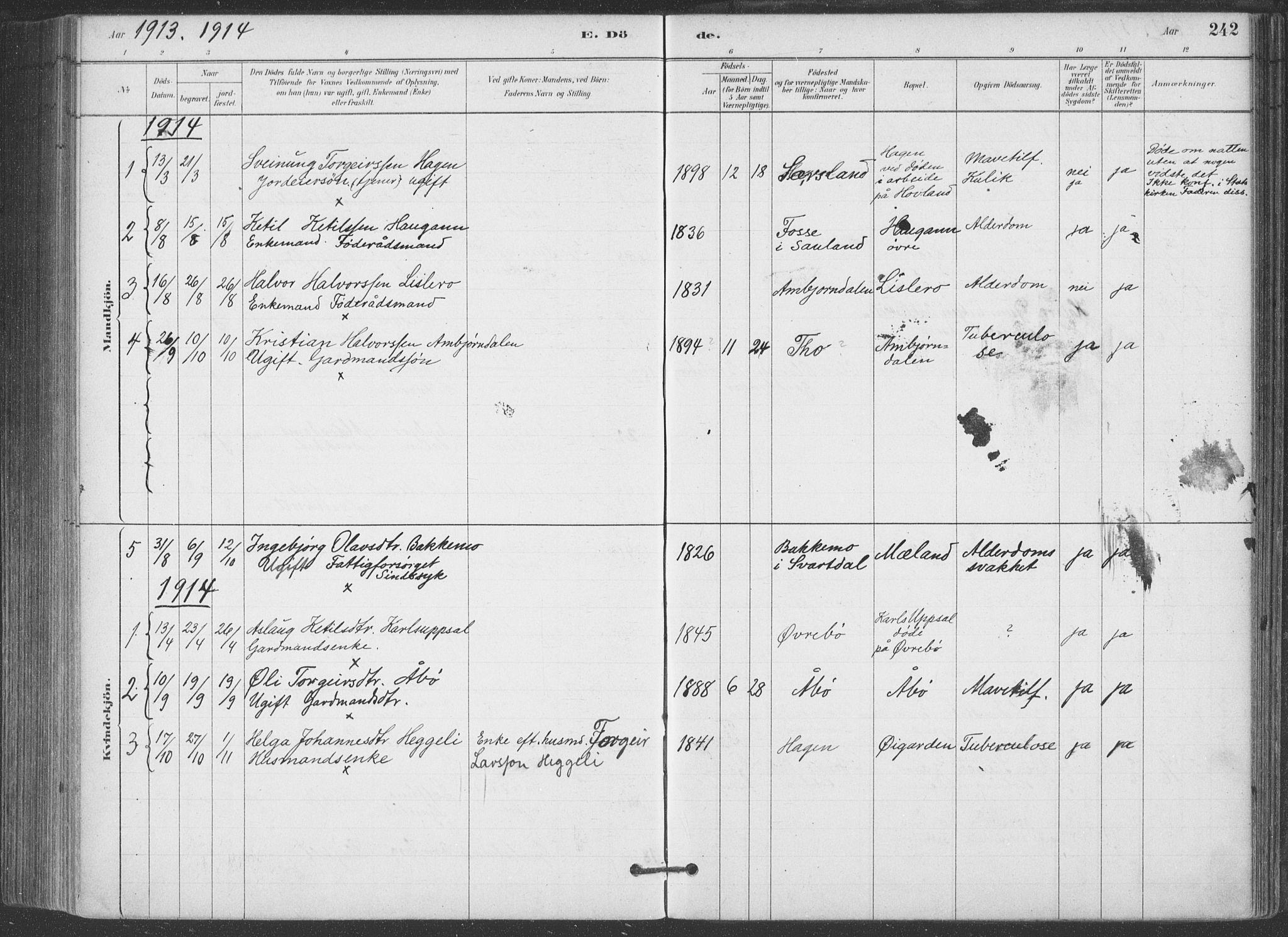 SAKO, Hjartdal kirkebøker, F/Fa/L0010: Ministerialbok nr. I 10, 1880-1929, s. 242