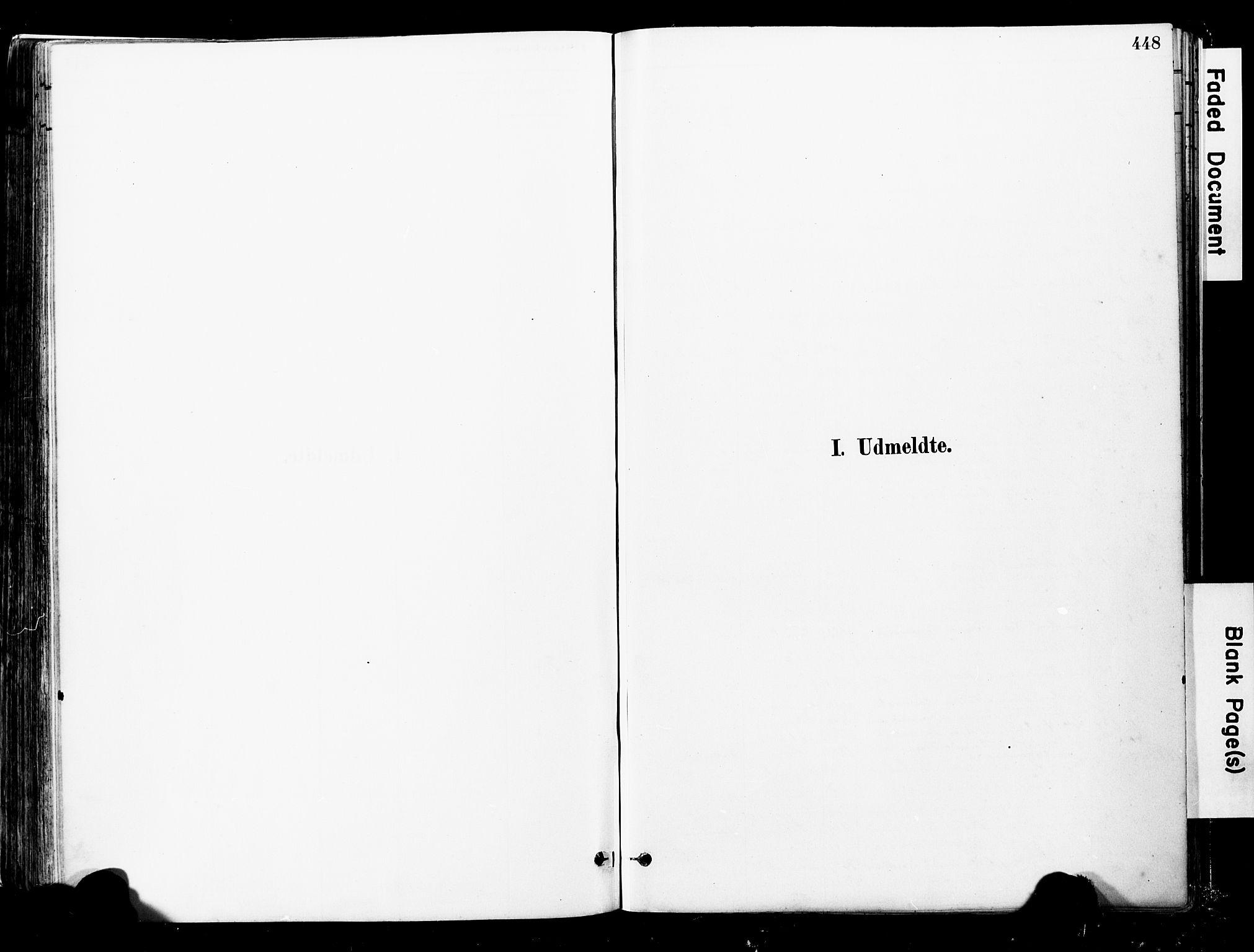 SAT, Ministerialprotokoller, klokkerbøker og fødselsregistre - Nord-Trøndelag, 723/L0244: Ministerialbok nr. 723A13, 1881-1899, s. 448
