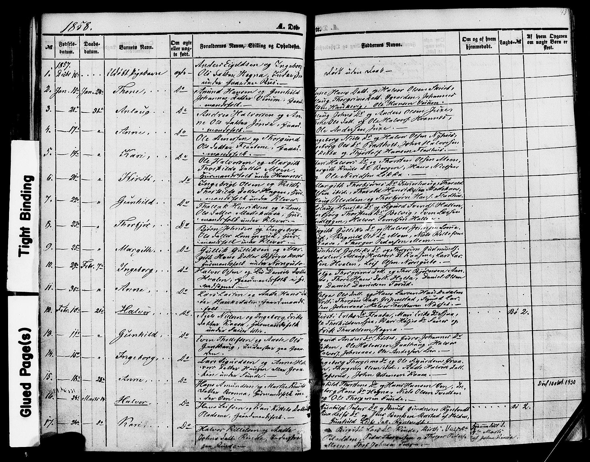 SAKO, Sauherad kirkebøker, F/Fa/L0007: Ministerialbok nr. I 7, 1851-1873, s. 43