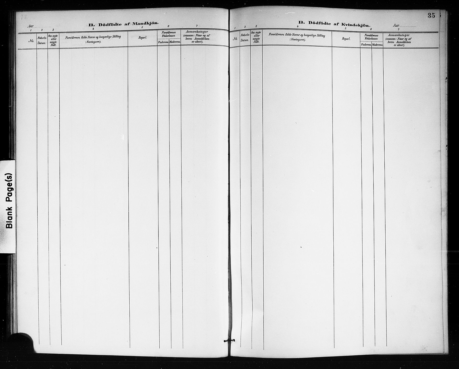 SAKO, Lårdal kirkebøker, G/Gb/L0003: Klokkerbok nr. II 3, 1889-1920, s. 35