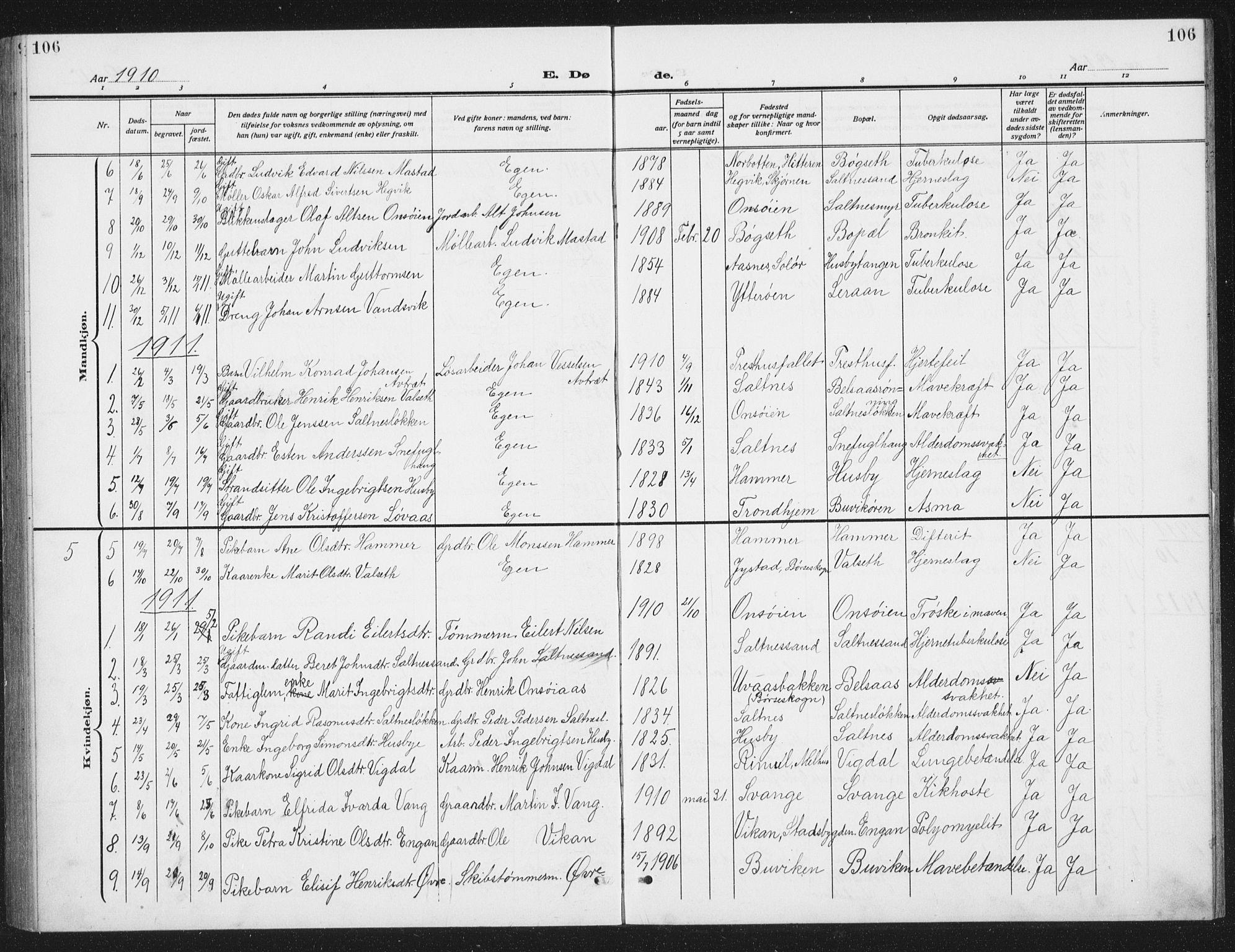 SAT, Ministerialprotokoller, klokkerbøker og fødselsregistre - Sør-Trøndelag, 666/L0791: Klokkerbok nr. 666C04, 1909-1939, s. 106