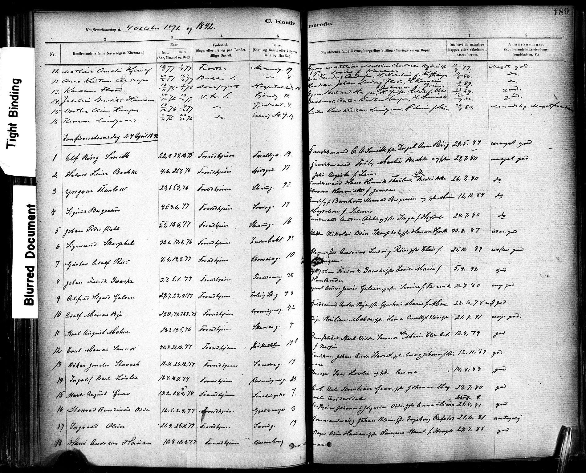 SAT, Ministerialprotokoller, klokkerbøker og fødselsregistre - Sør-Trøndelag, 602/L0119: Ministerialbok nr. 602A17, 1880-1901, s. 189