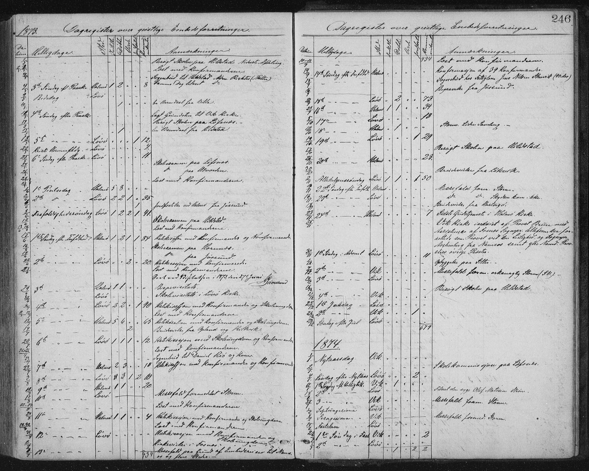 SAT, Ministerialprotokoller, klokkerbøker og fødselsregistre - Nord-Trøndelag, 771/L0596: Ministerialbok nr. 771A03, 1870-1884, s. 246