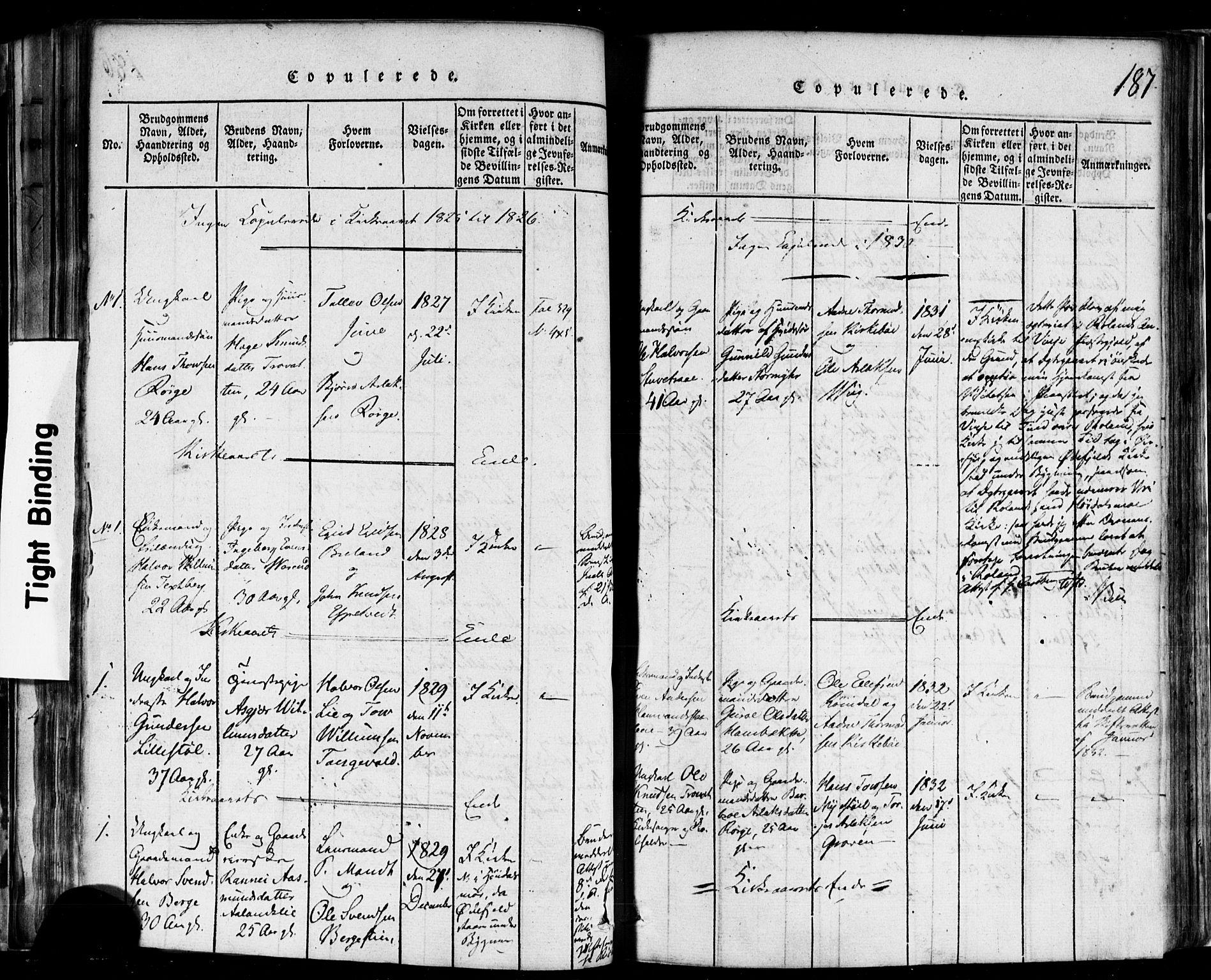 SAKO, Rauland kirkebøker, F/Fa/L0002: Ministerialbok nr. 2, 1815-1860, s. 187