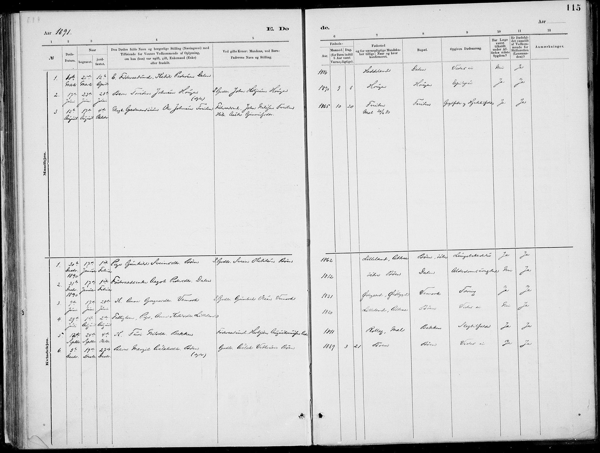 SAKO, Rjukan kirkebøker, F/Fa/L0001: Ministerialbok nr. 1, 1878-1912, s. 115