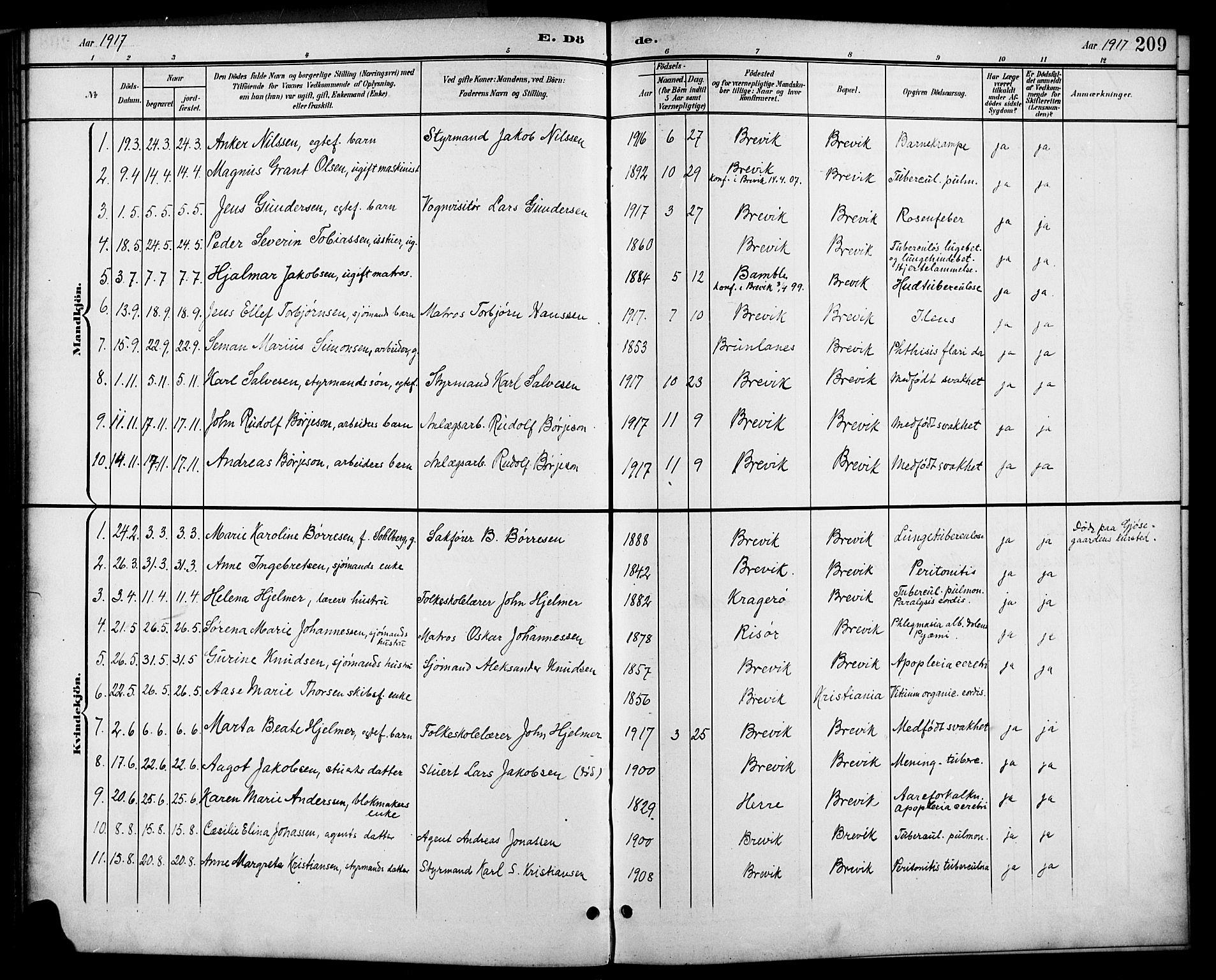 SAKO, Brevik kirkebøker, G/Ga/L0005: Klokkerbok nr. 5, 1901-1924, s. 209