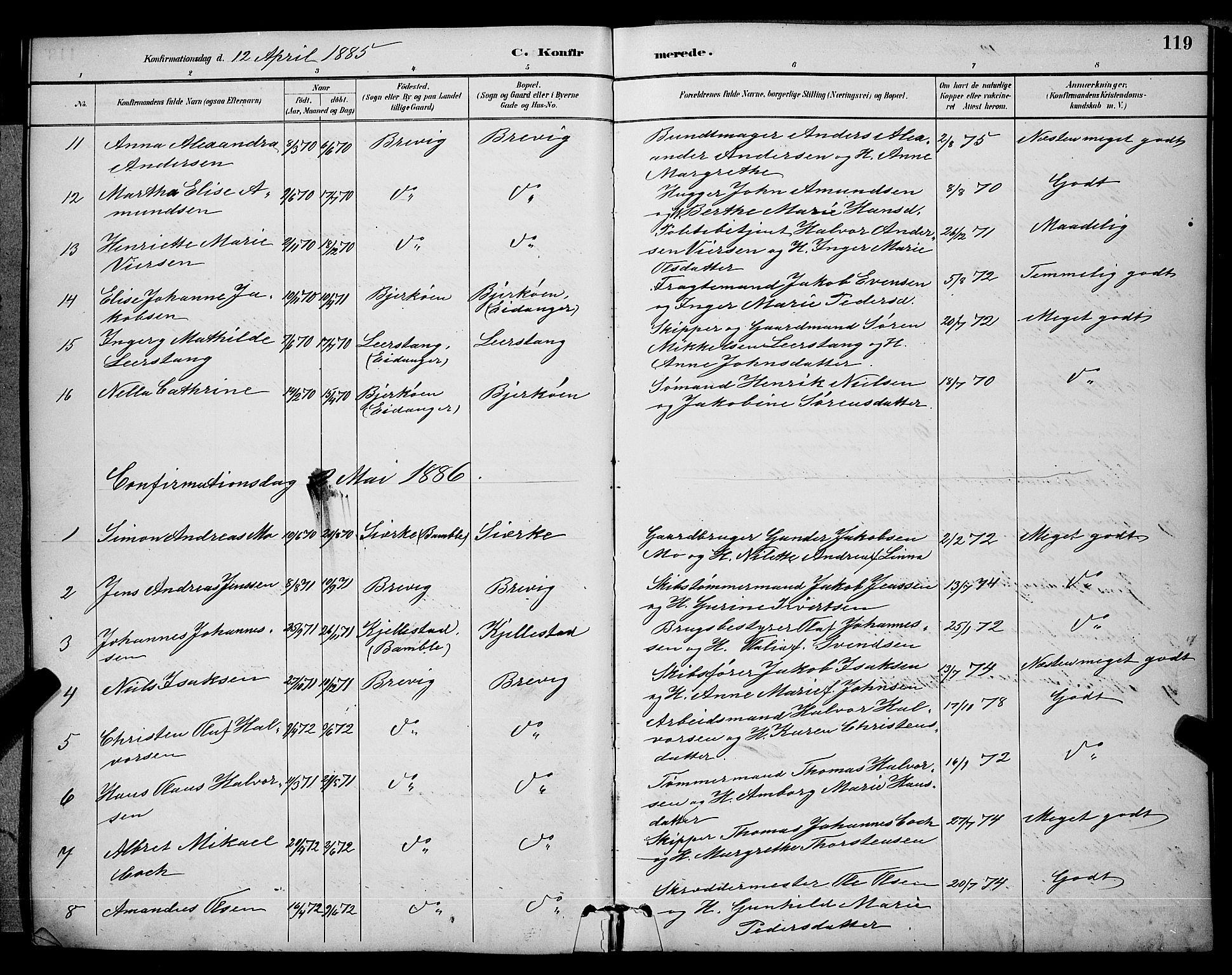 SAKO, Brevik kirkebøker, G/Ga/L0004: Klokkerbok nr. 4, 1882-1900, s. 119