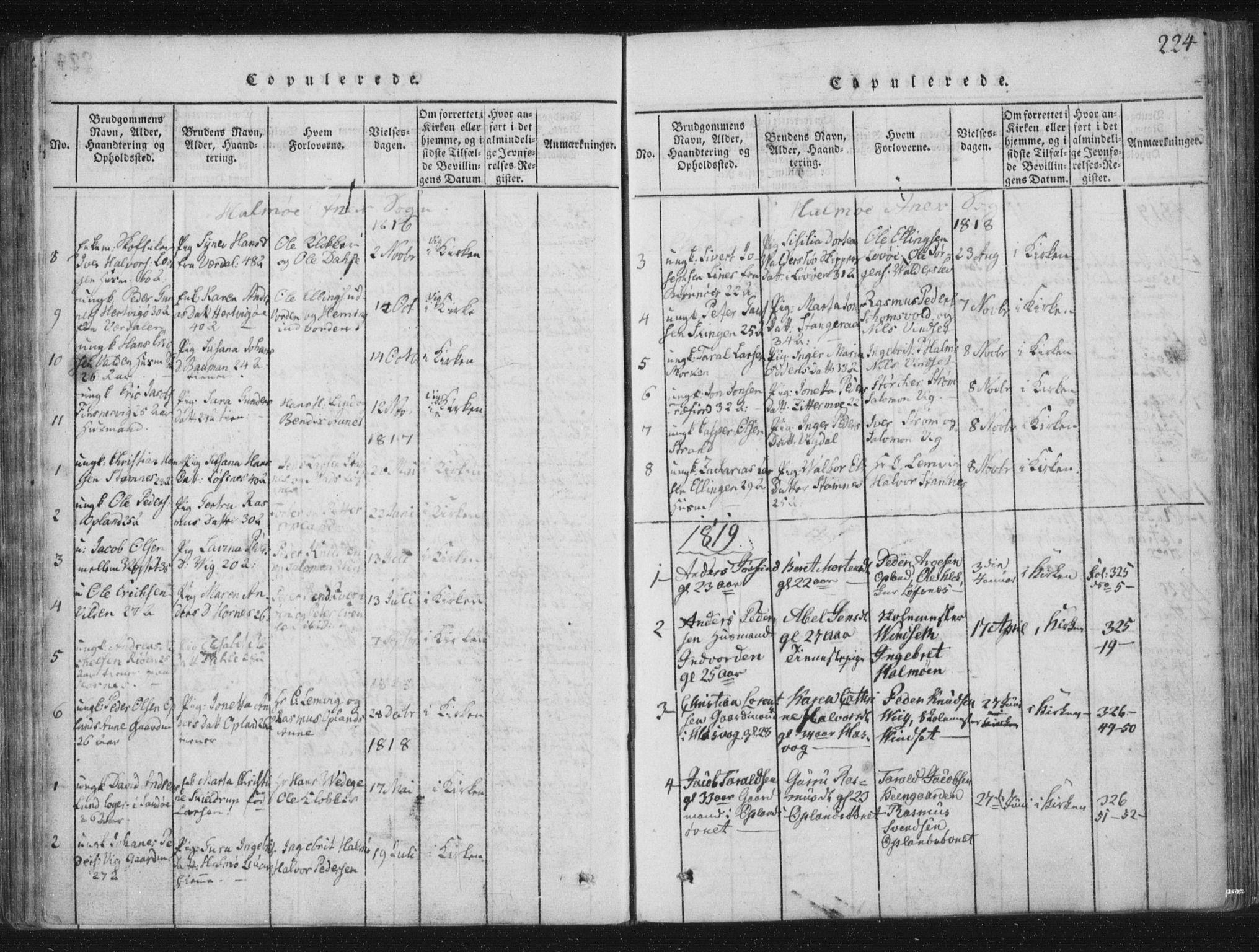 SAT, Ministerialprotokoller, klokkerbøker og fødselsregistre - Nord-Trøndelag, 773/L0609: Ministerialbok nr. 773A03 /3, 1815-1830, s. 224