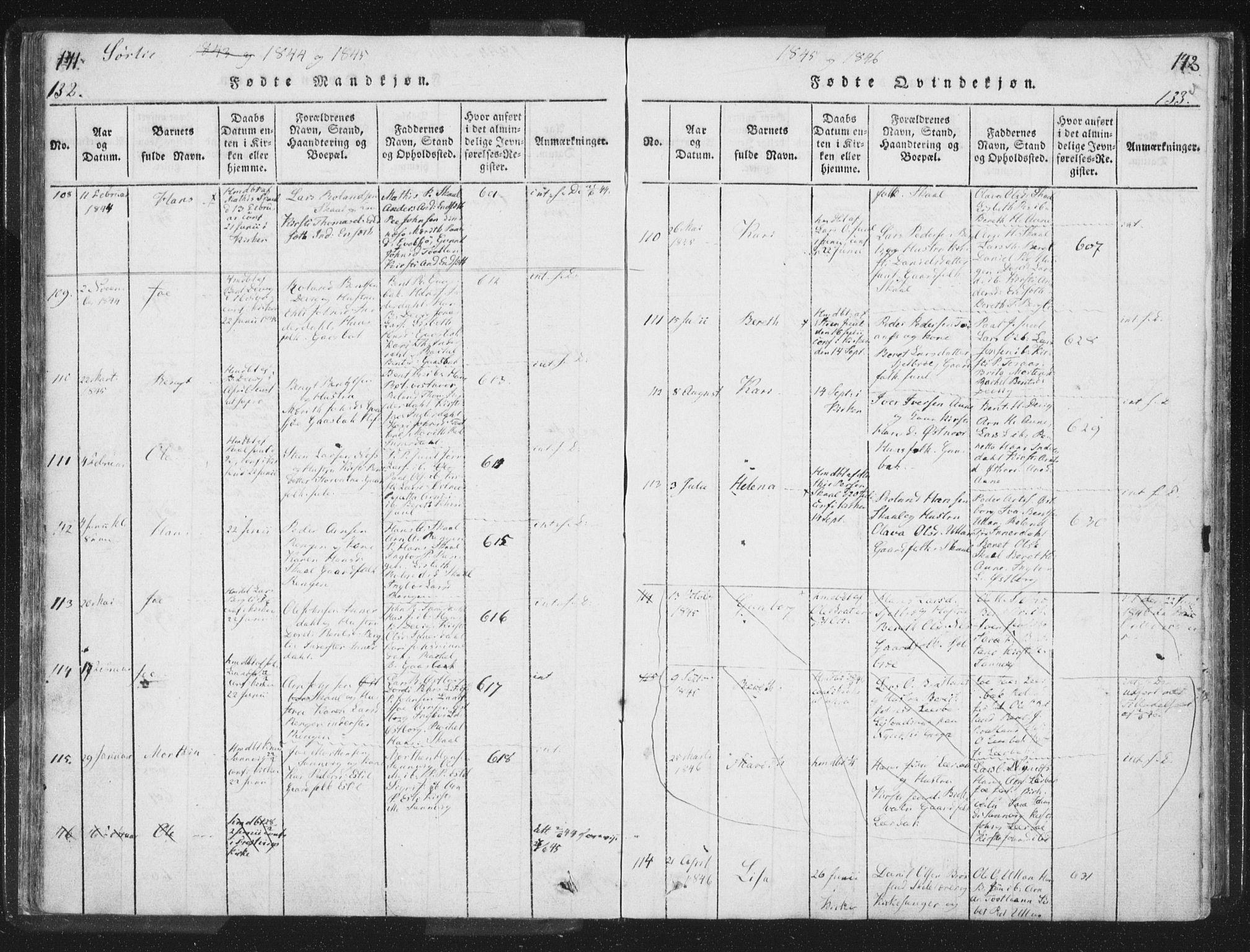 SAT, Ministerialprotokoller, klokkerbøker og fødselsregistre - Nord-Trøndelag, 755/L0491: Ministerialbok nr. 755A01 /2, 1817-1864, s. 132-133