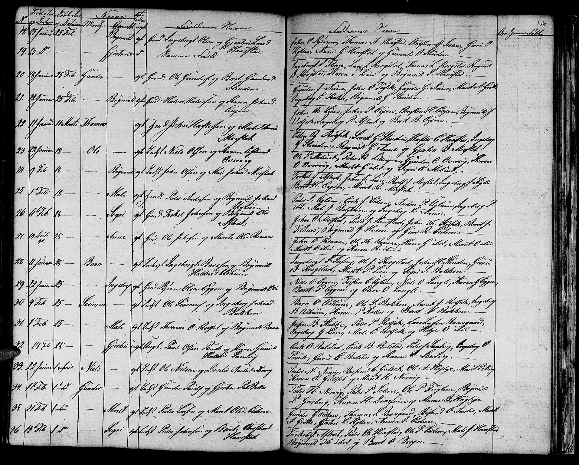 SAT, Ministerialprotokoller, klokkerbøker og fødselsregistre - Sør-Trøndelag, 695/L1154: Klokkerbok nr. 695C05, 1842-1858, s. 164