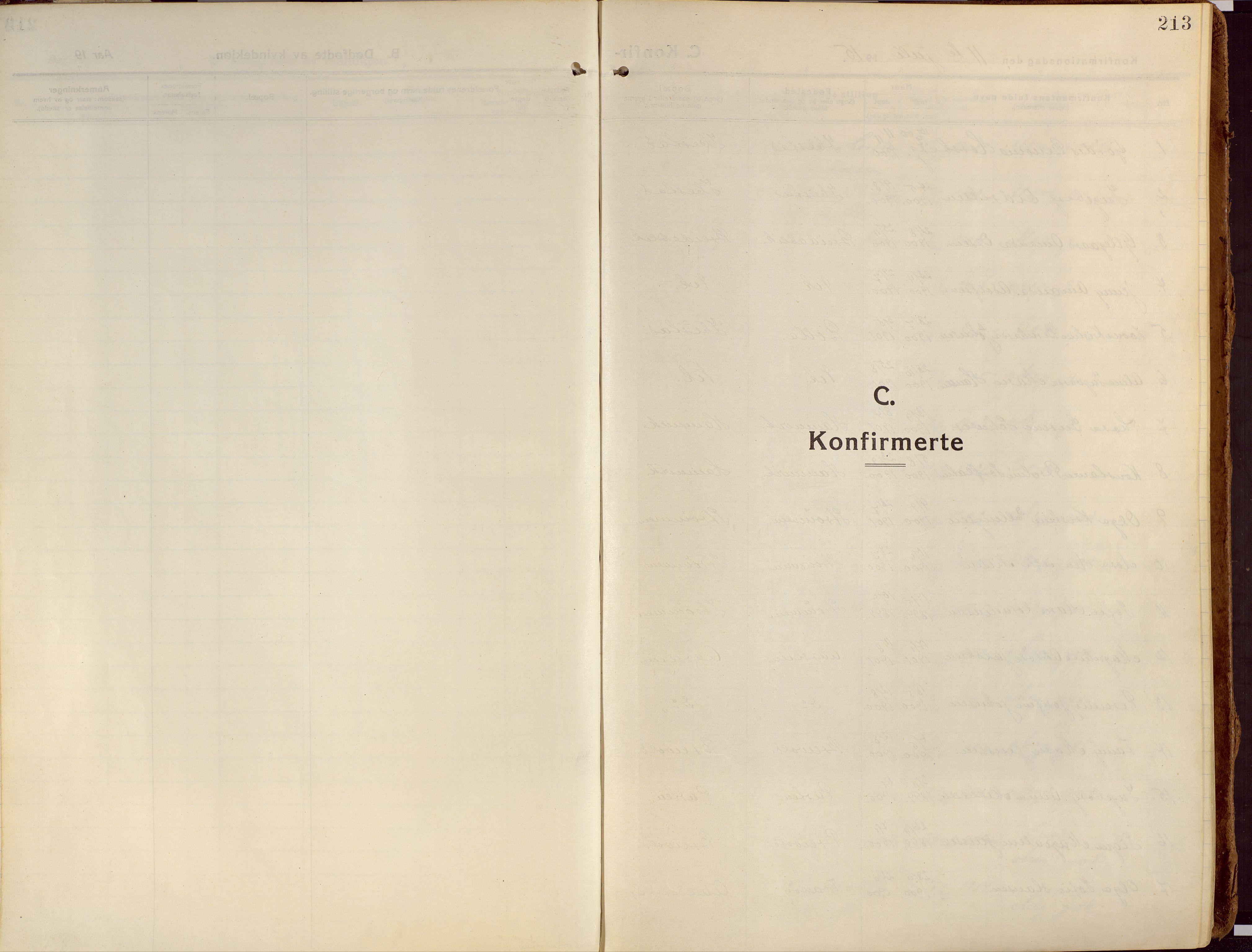 SATØ, Ibestad sokneprestembete, Ministerialbok nr. 18, 1915-1929, s. 213