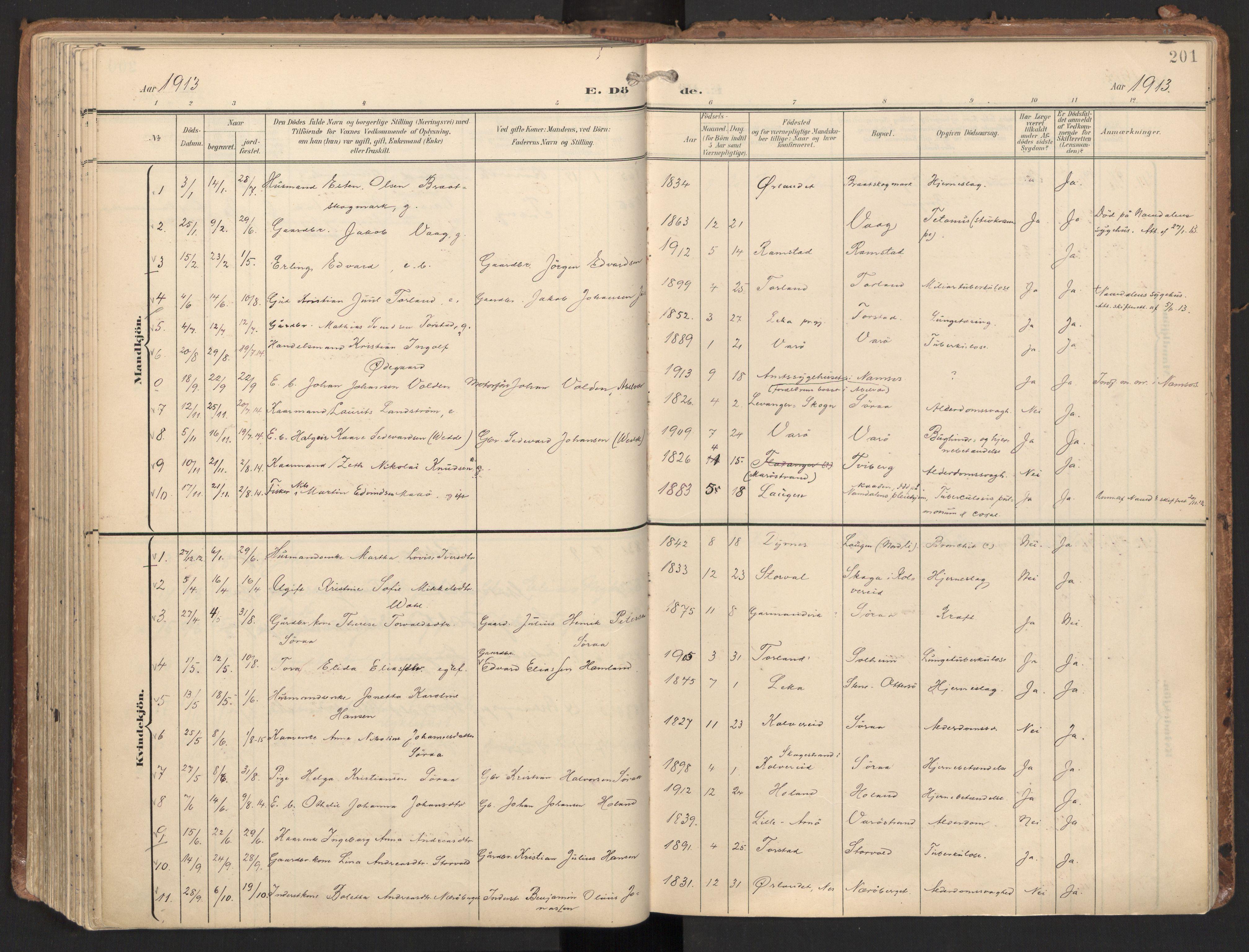 SAT, Ministerialprotokoller, klokkerbøker og fødselsregistre - Nord-Trøndelag, 784/L0677: Ministerialbok nr. 784A12, 1900-1920, s. 201