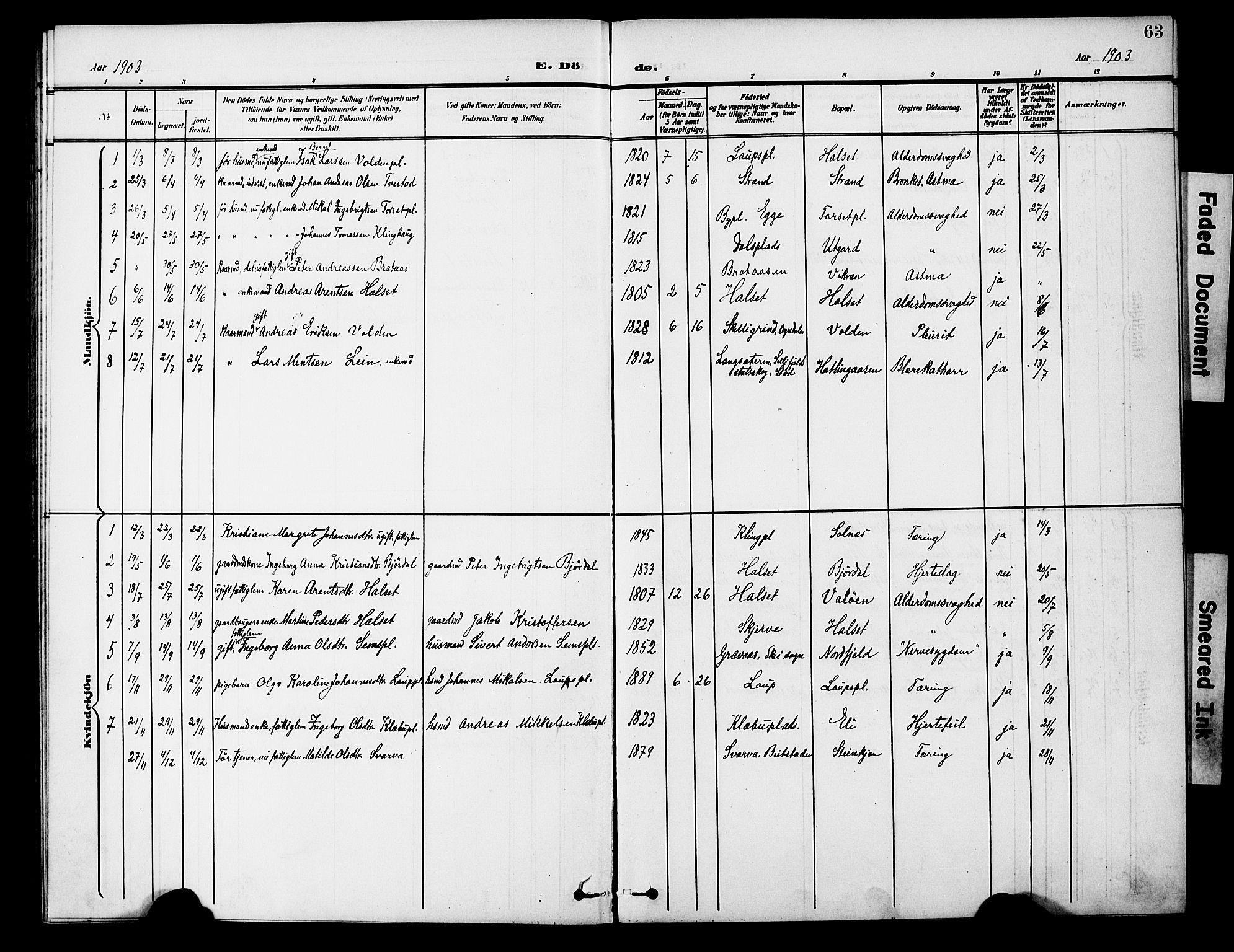 SAT, Ministerialprotokoller, klokkerbøker og fødselsregistre - Nord-Trøndelag, 746/L0452: Ministerialbok nr. 746A09, 1900-1908, s. 63