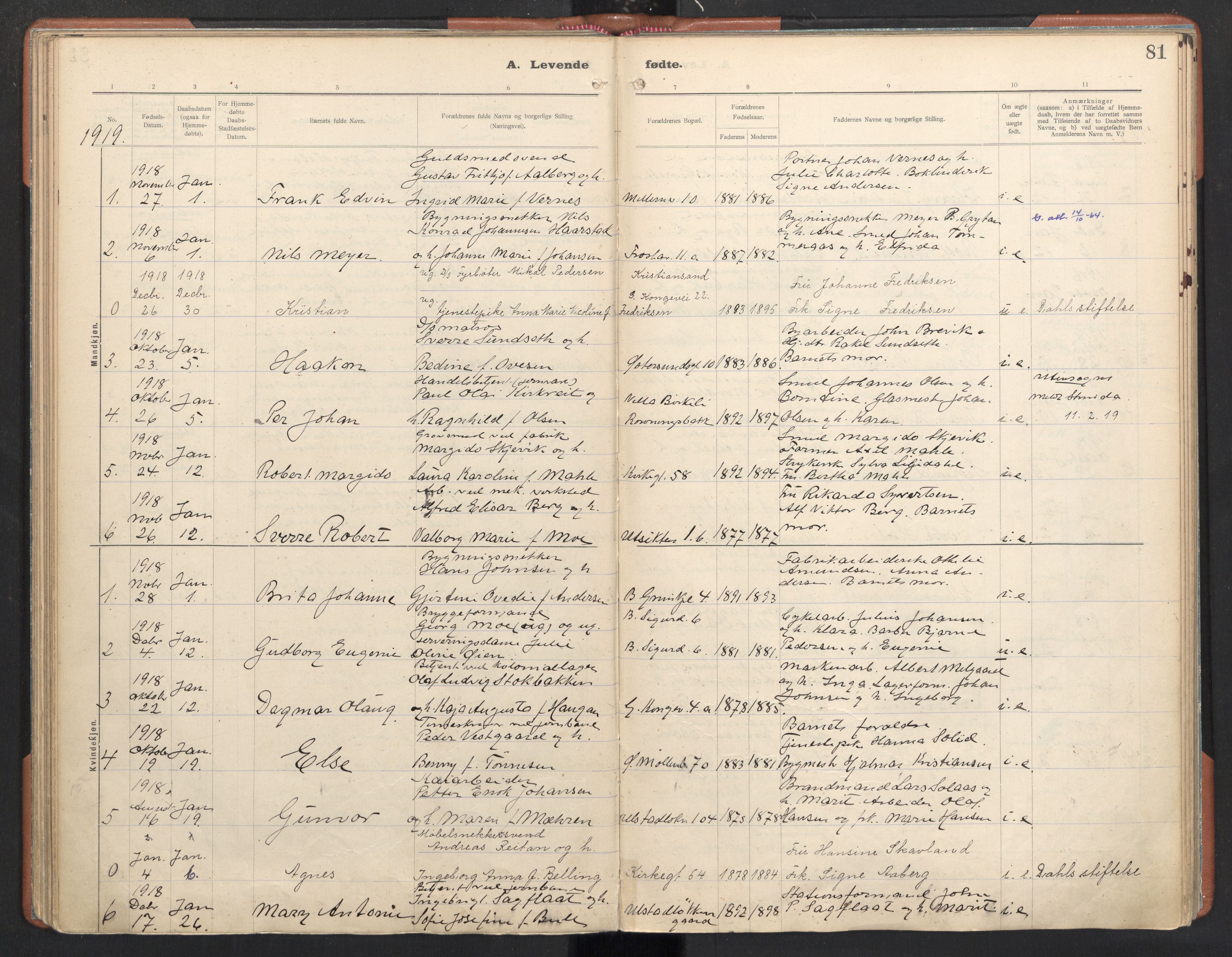SAT, Ministerialprotokoller, klokkerbøker og fødselsregistre - Sør-Trøndelag, 605/L0246: Ministerialbok nr. 605A08, 1916-1920, s. 81