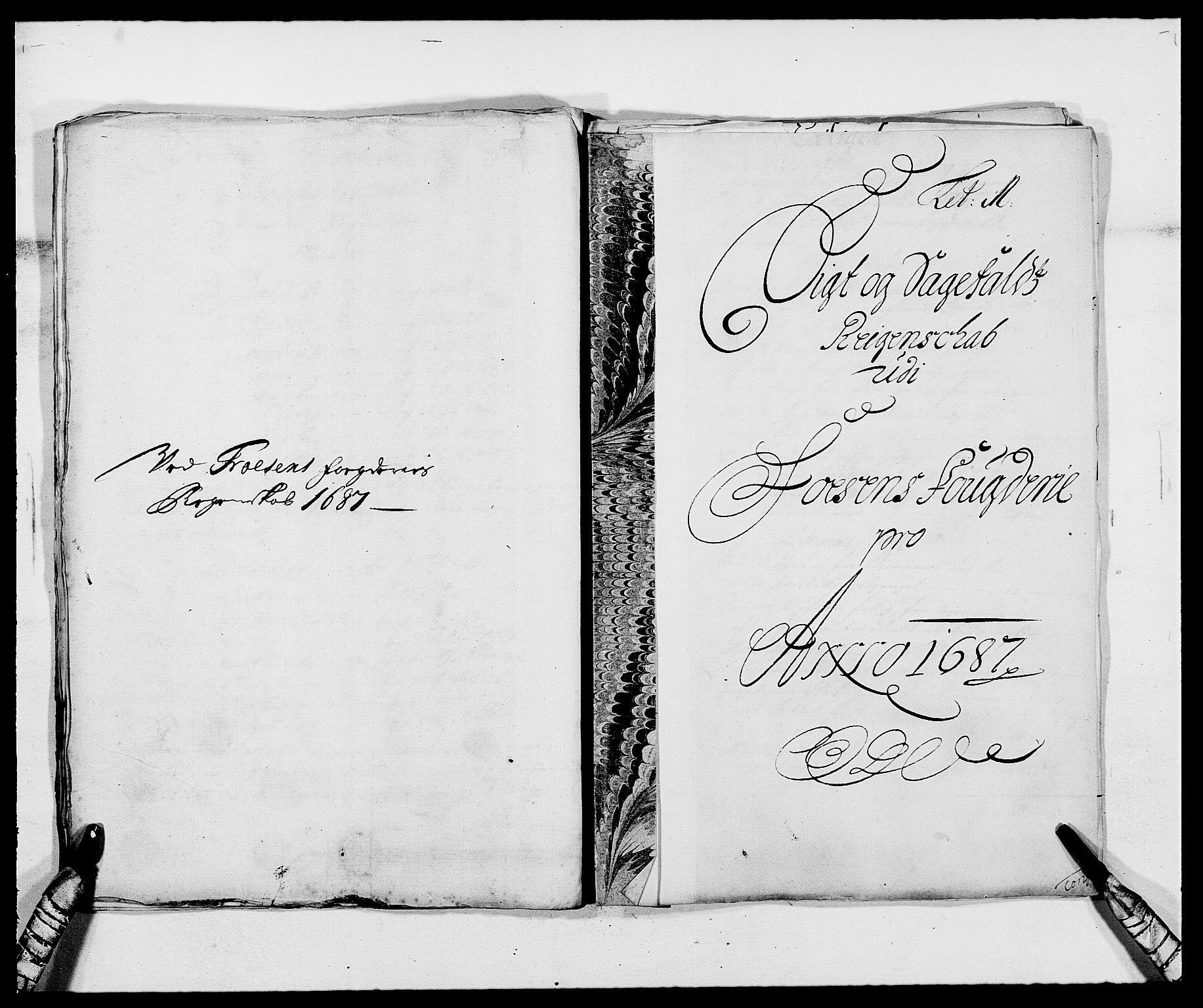 RA, Rentekammeret inntil 1814, Reviderte regnskaper, Fogderegnskap, R57/L3845: Fogderegnskap Fosen, 1687, s. 131