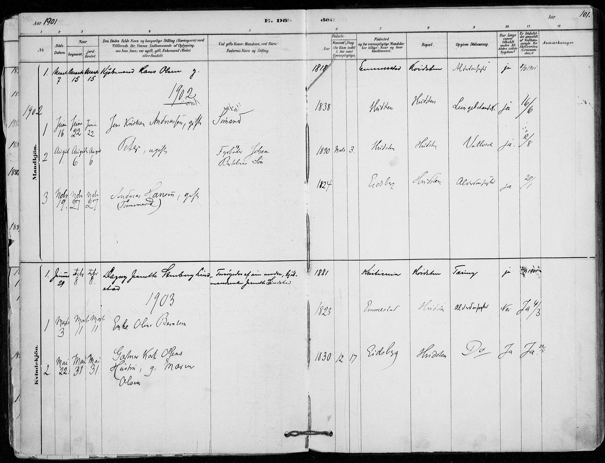 SAO, Vestby prestekontor Kirkebøker, F/Fd/L0001: Ministerialbok nr. IV 1, 1878-1945, s. 101