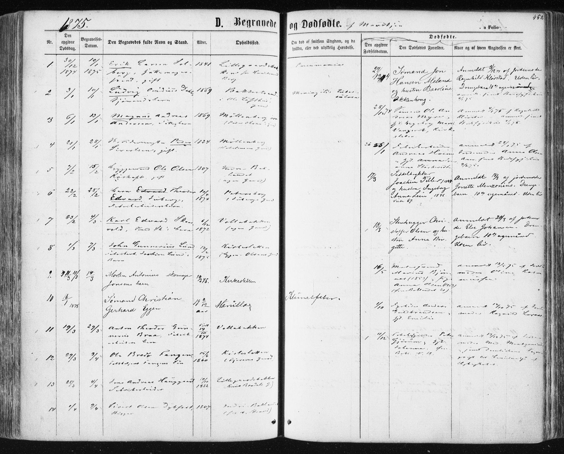 SAT, Ministerialprotokoller, klokkerbøker og fødselsregistre - Sør-Trøndelag, 604/L0186: Ministerialbok nr. 604A07, 1866-1877, s. 452