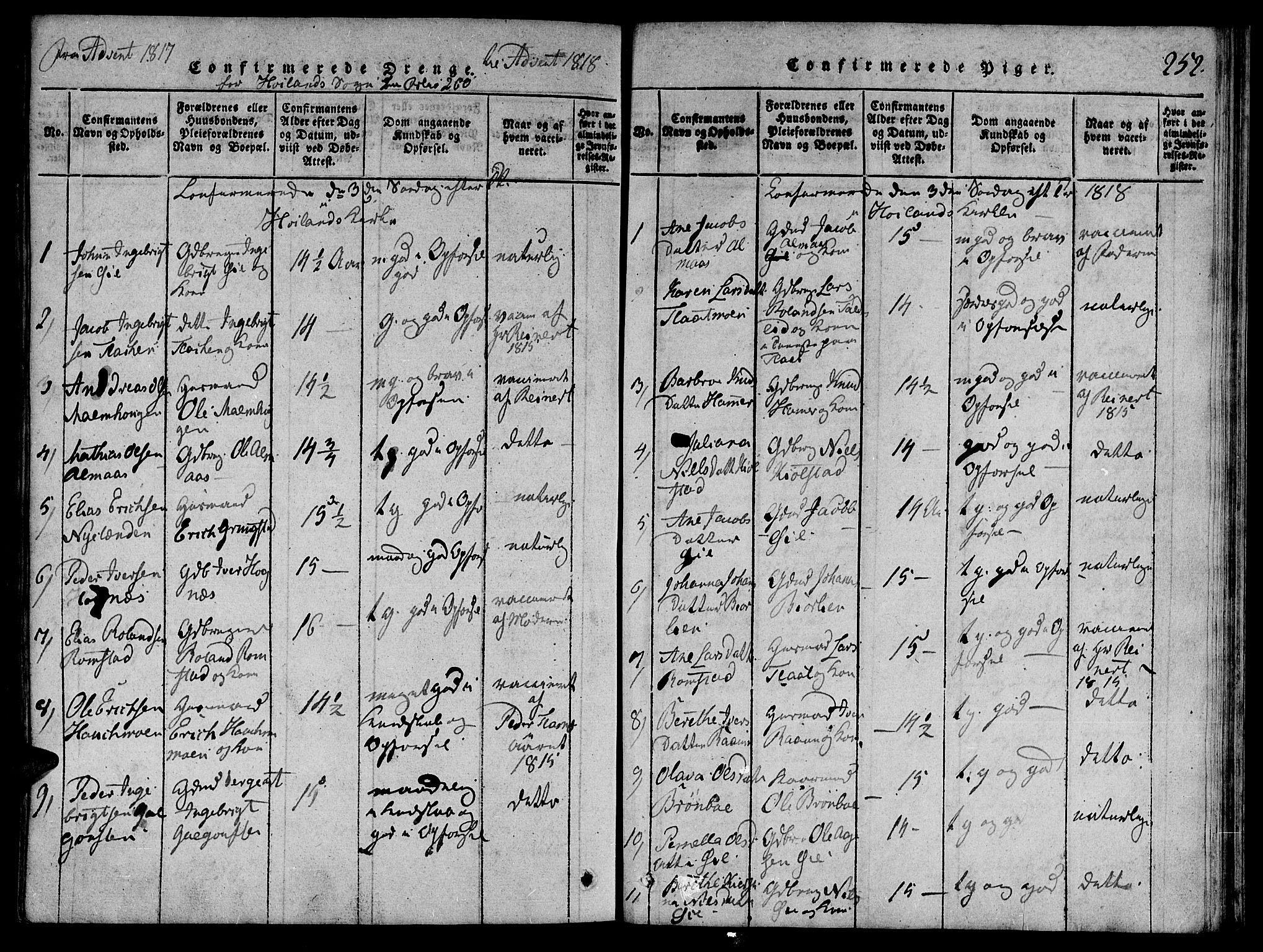 SAT, Ministerialprotokoller, klokkerbøker og fødselsregistre - Nord-Trøndelag, 764/L0546: Ministerialbok nr. 764A06 /3, 1817-1821, s. 252