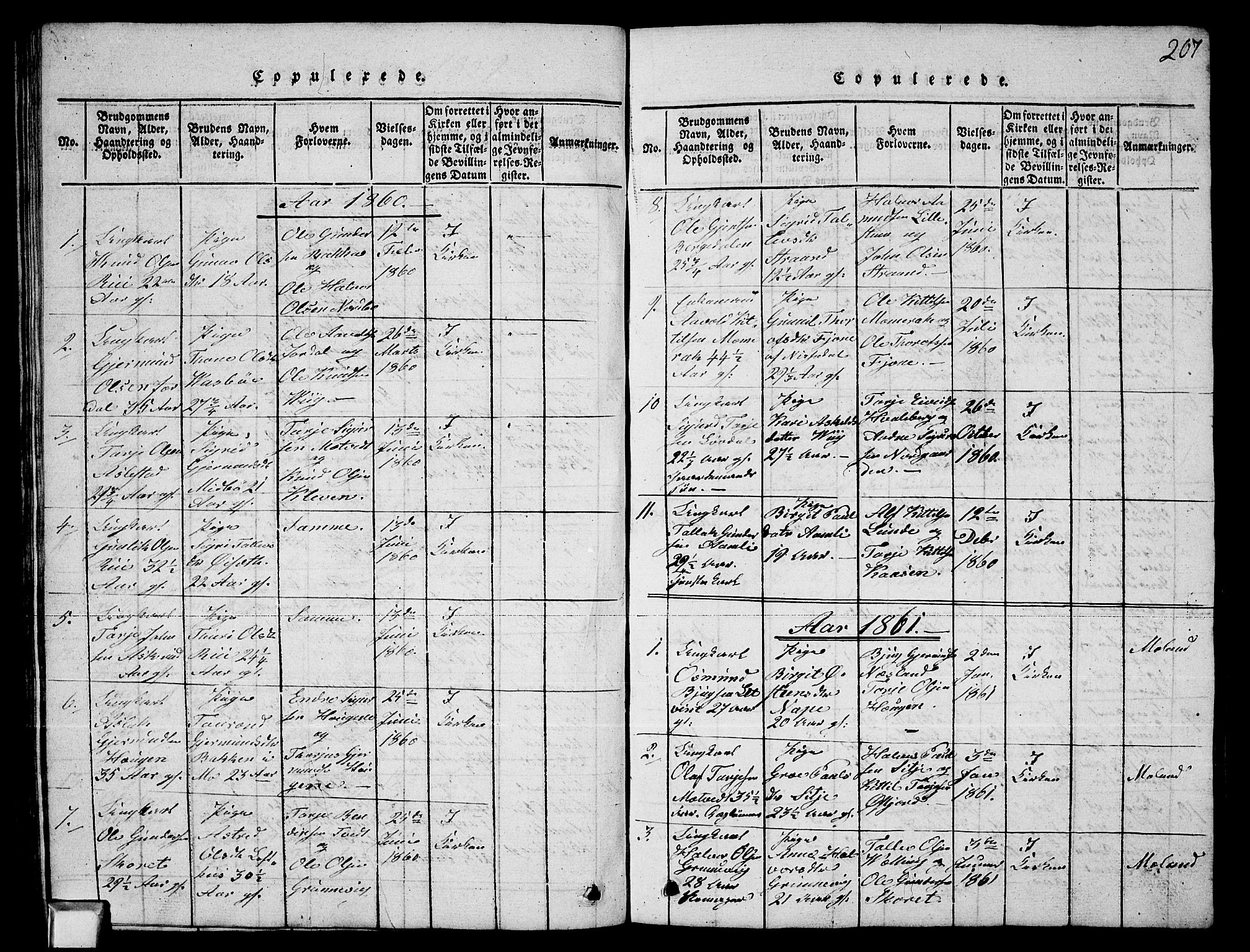 SAKO, Fyresdal kirkebøker, G/Ga/L0003: Klokkerbok nr. I 3, 1815-1863, s. 207