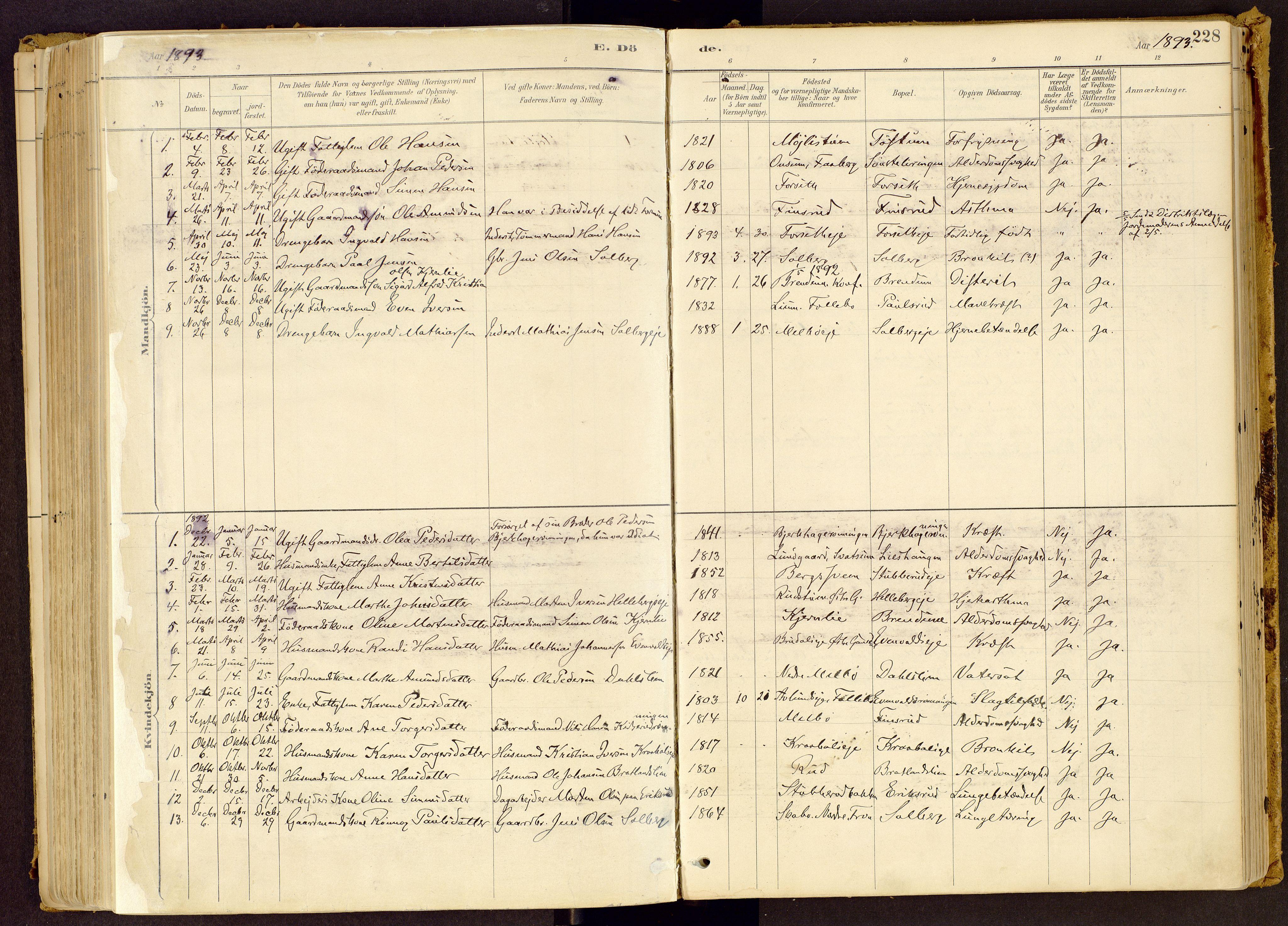 SAH, Vestre Gausdal prestekontor, Ministerialbok nr. 1, 1887-1914, s. 228