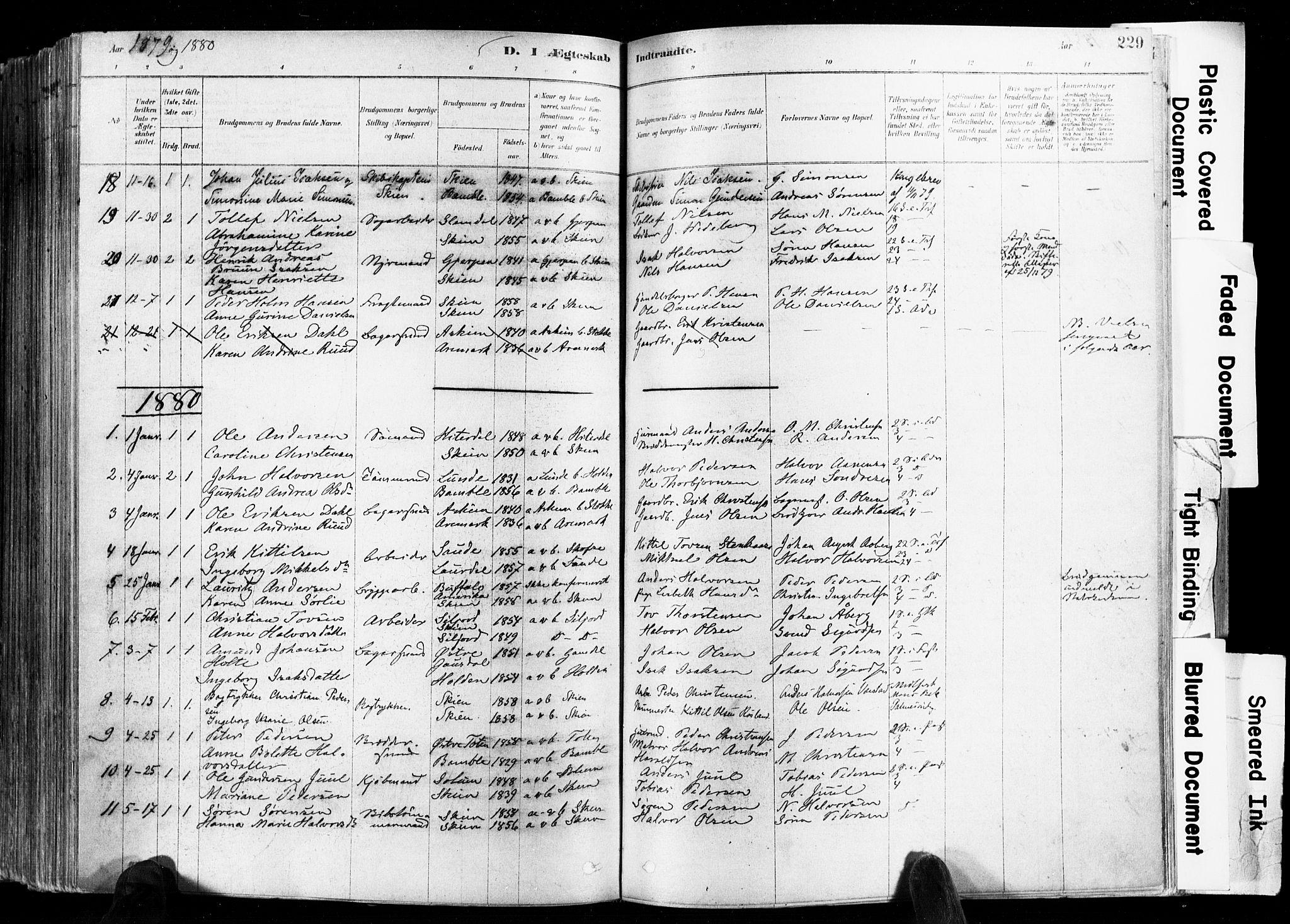 SAKO, Skien kirkebøker, F/Fa/L0009: Ministerialbok nr. 9, 1878-1890, s. 229