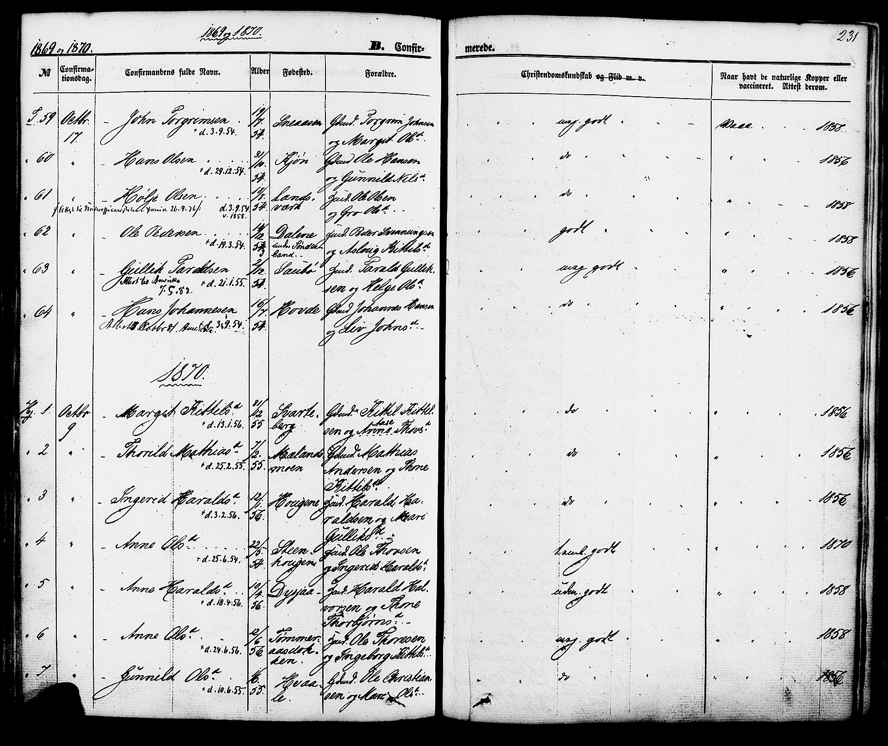 SAKO, Hjartdal kirkebøker, F/Fa/L0009: Ministerialbok nr. I 9, 1860-1879, s. 231