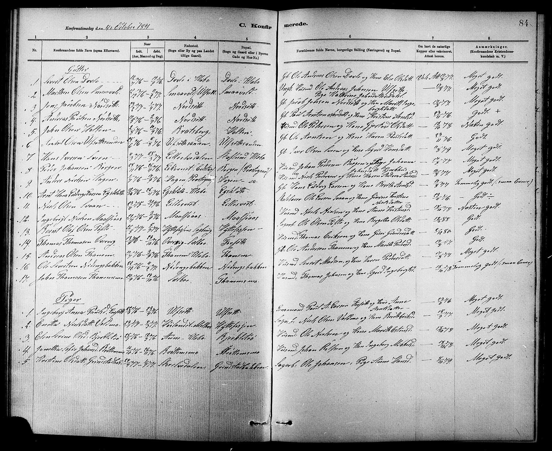 SAT, Ministerialprotokoller, klokkerbøker og fødselsregistre - Sør-Trøndelag, 618/L0452: Klokkerbok nr. 618C03, 1884-1906, s. 84