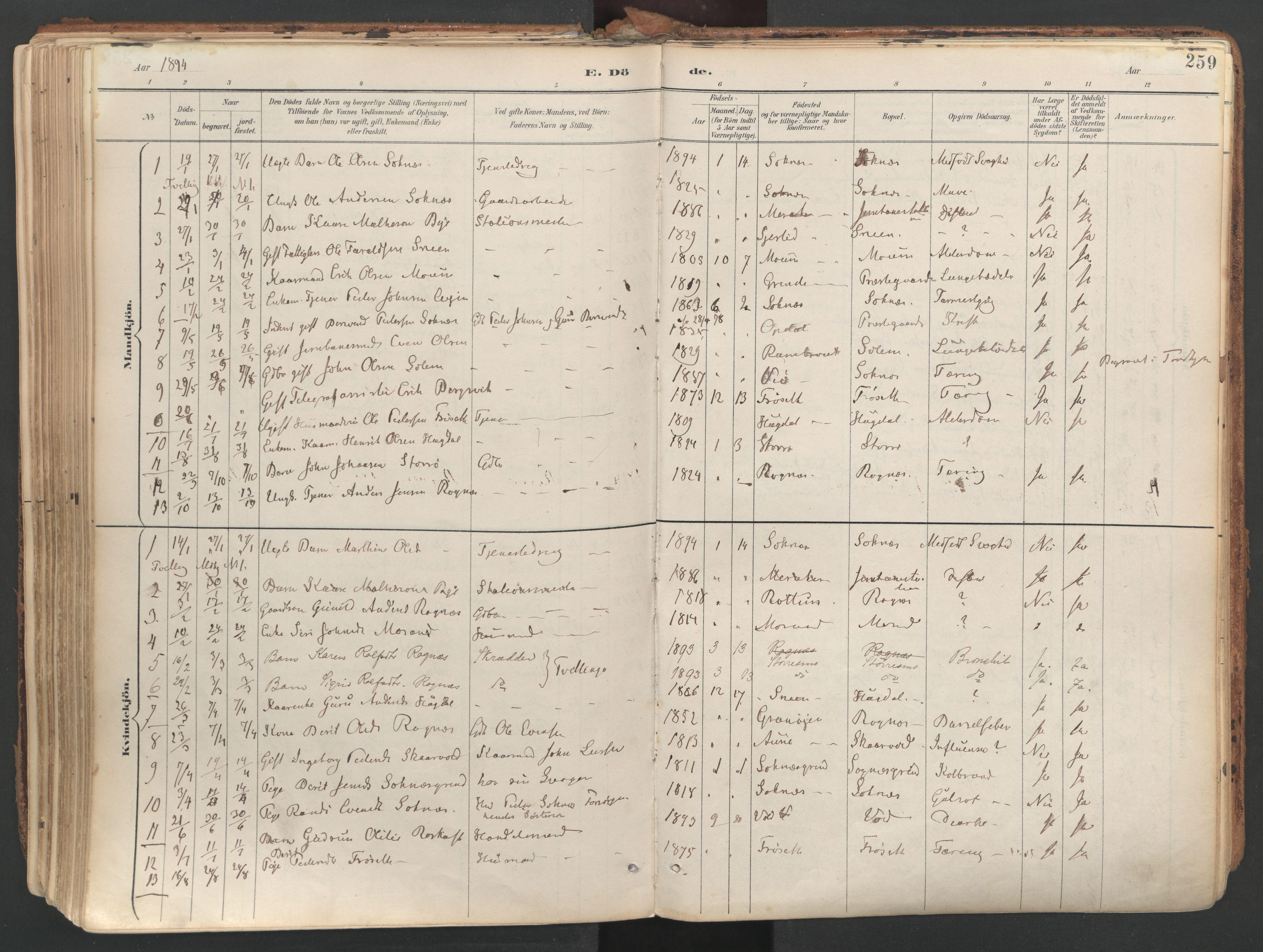 SAT, Ministerialprotokoller, klokkerbøker og fødselsregistre - Sør-Trøndelag, 687/L1004: Ministerialbok nr. 687A10, 1891-1923, s. 259