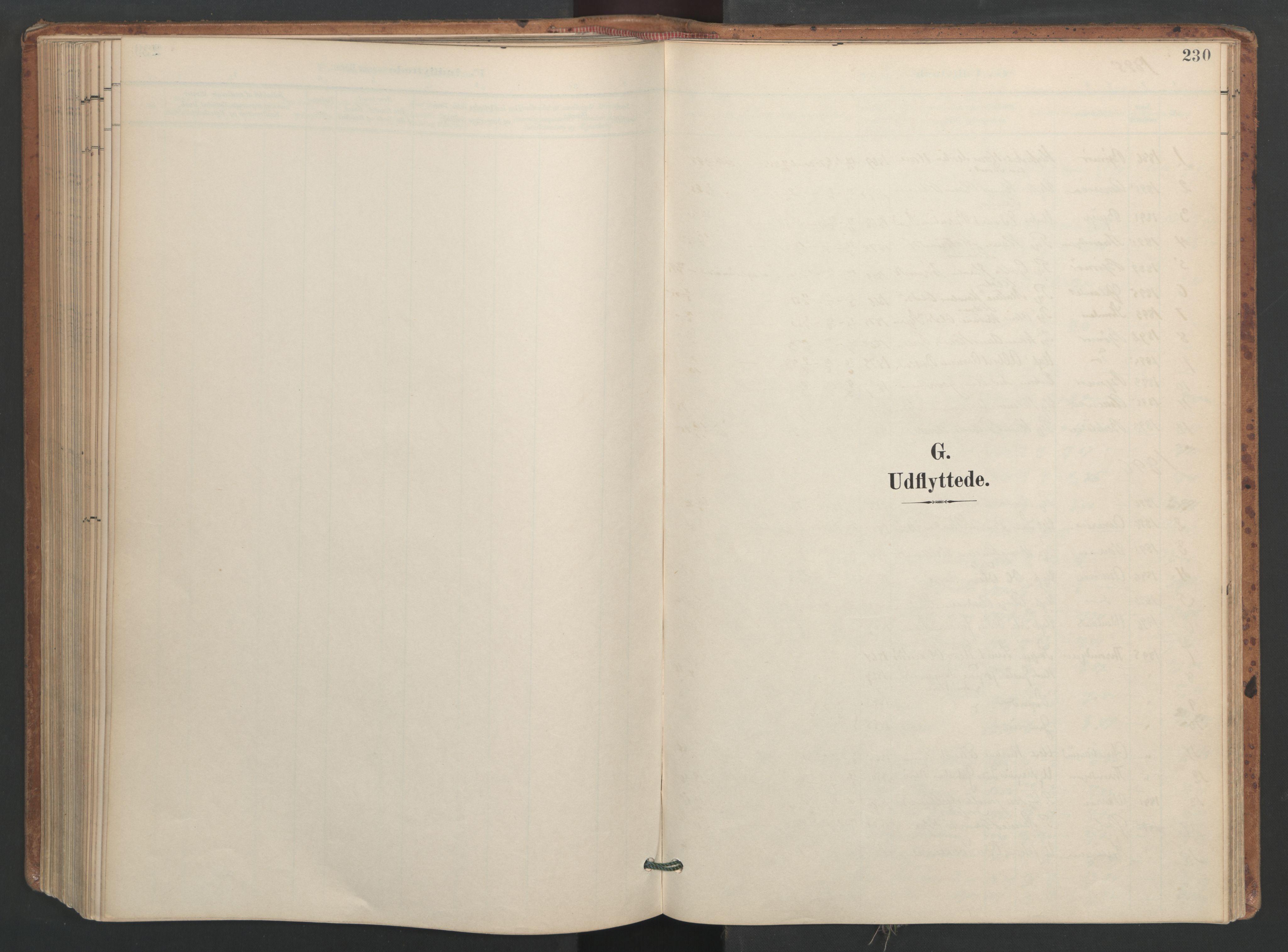 SAT, Ministerialprotokoller, klokkerbøker og fødselsregistre - Sør-Trøndelag, 655/L0681: Ministerialbok nr. 655A10, 1895-1907, s. 230