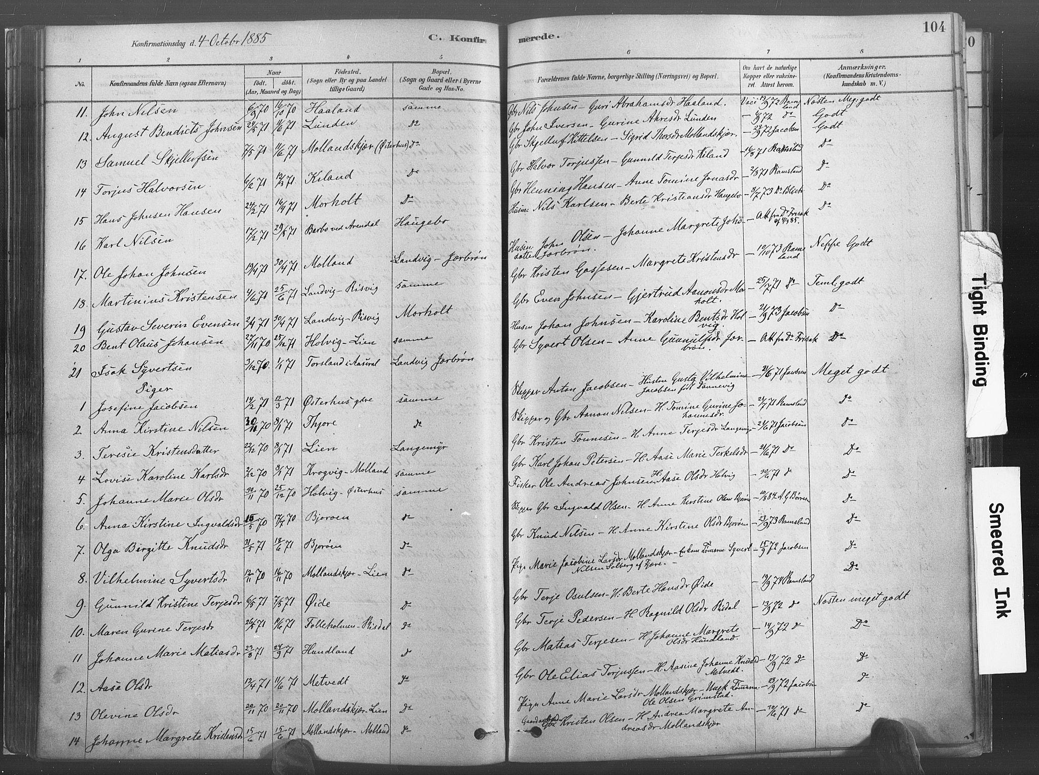 SAK, Hommedal sokneprestkontor, F/Fa/Fab/L0006: Ministerialbok nr. A 6, 1878-1897, s. 104