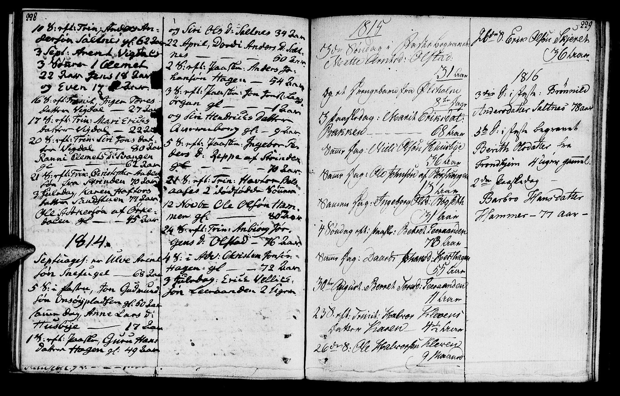 SAT, Ministerialprotokoller, klokkerbøker og fødselsregistre - Sør-Trøndelag, 666/L0785: Ministerialbok nr. 666A03, 1803-1816, s. 228-229