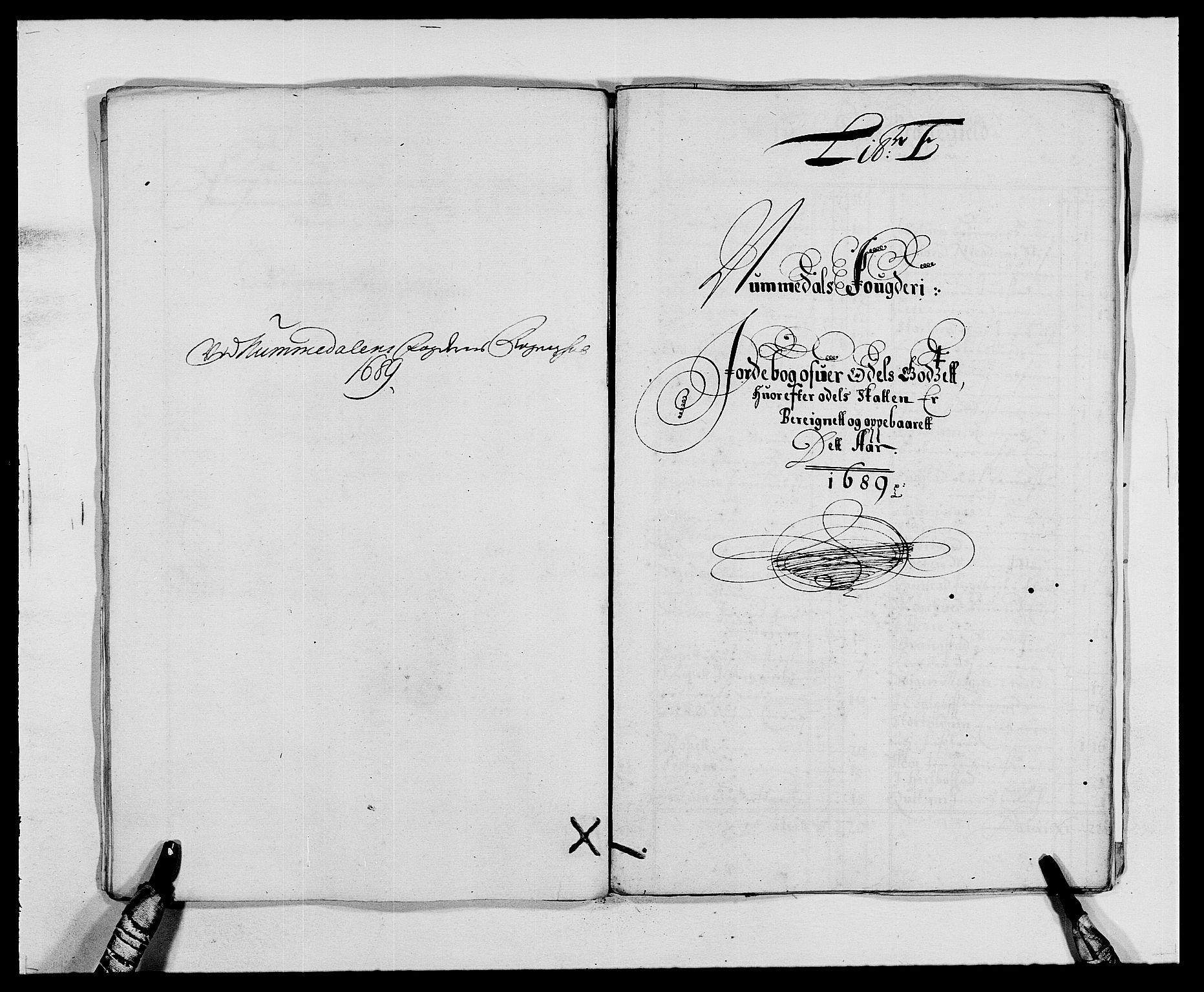 RA, Rentekammeret inntil 1814, Reviderte regnskaper, Fogderegnskap, R64/L4422: Fogderegnskap Namdal, 1687-1689, s. 220