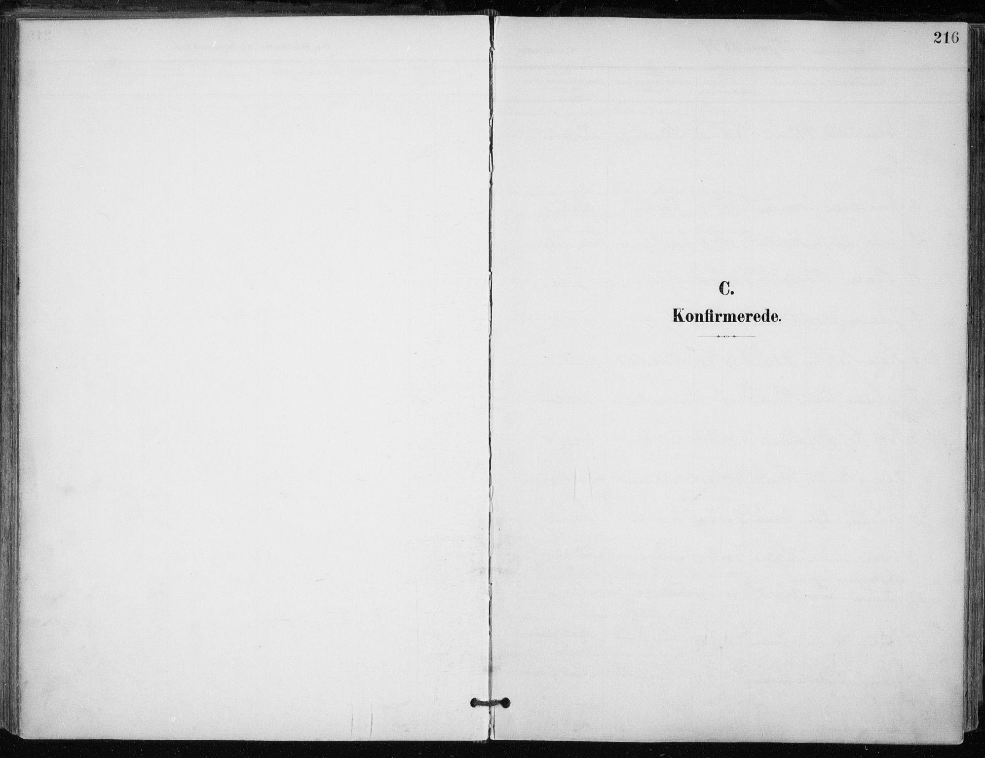 SATØ, Trondenes sokneprestkontor, H/Ha/L0017kirke: Ministerialbok nr. 17, 1899-1908, s. 216