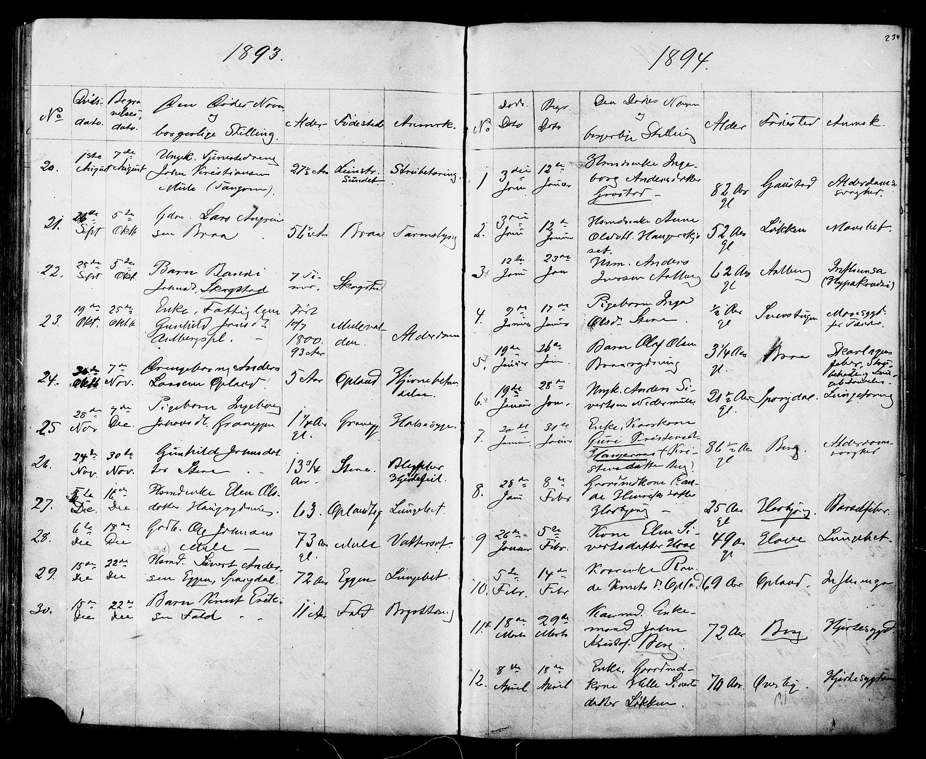 SAT, Ministerialprotokoller, klokkerbøker og fødselsregistre - Sør-Trøndelag, 612/L0387: Klokkerbok nr. 612C03, 1874-1908, s. 234