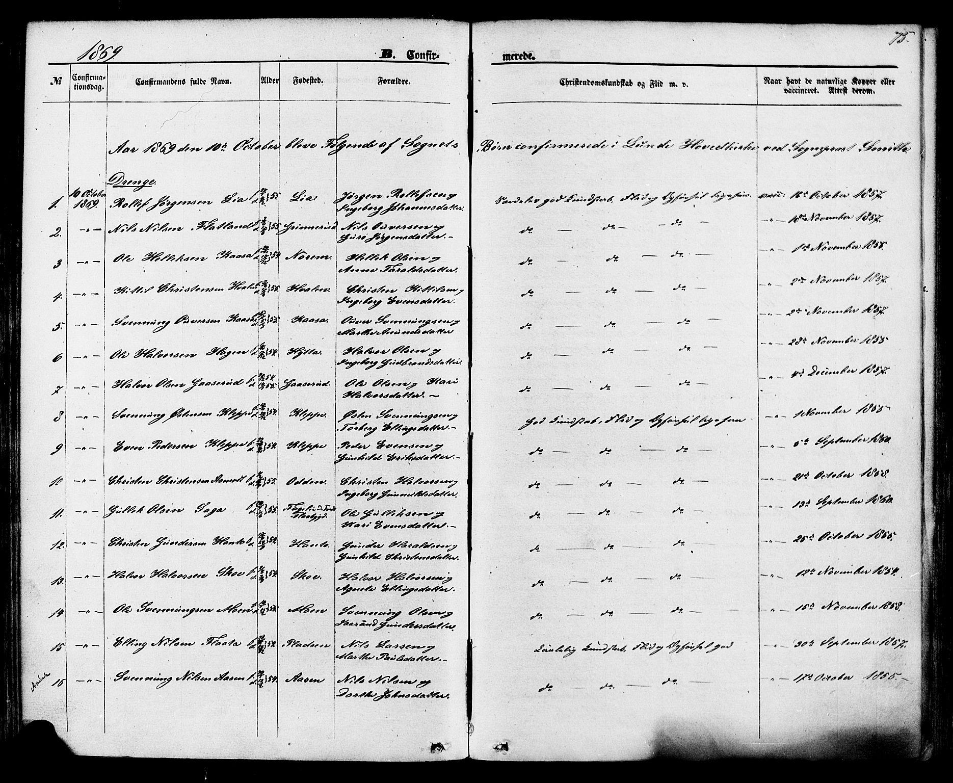SAKO, Lunde kirkebøker, F/Fa/L0001: Ministerialbok nr. I 1, 1866-1883, s. 75