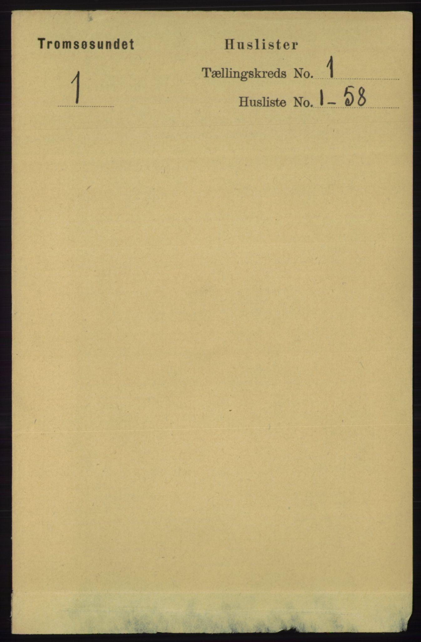 RA, Folketelling 1891 for 1934 Tromsøysund herred, 1891, s. 22