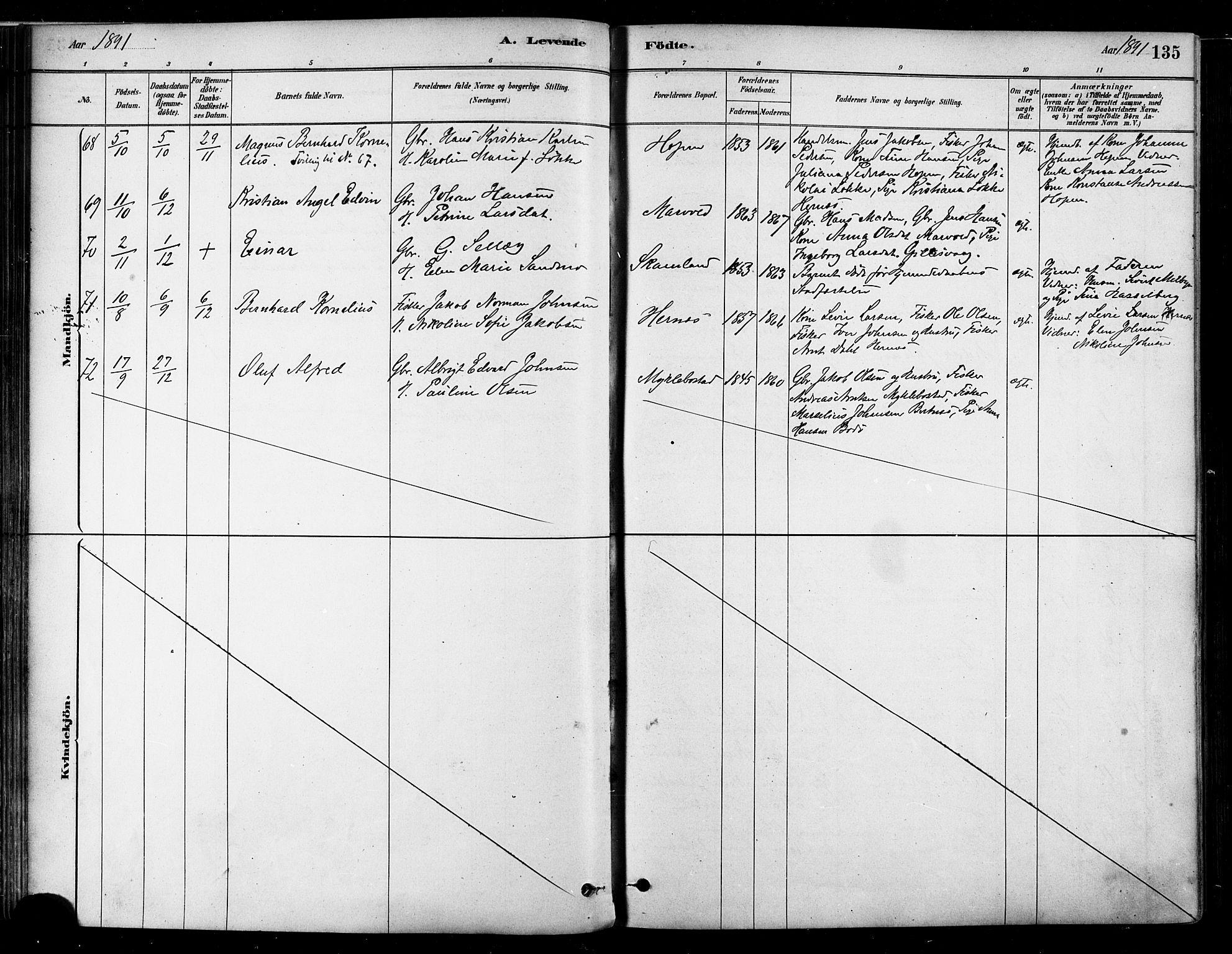 SAT, Ministerialprotokoller, klokkerbøker og fødselsregistre - Nordland, 802/L0054: Ministerialbok nr. 802A01, 1879-1893, s. 135