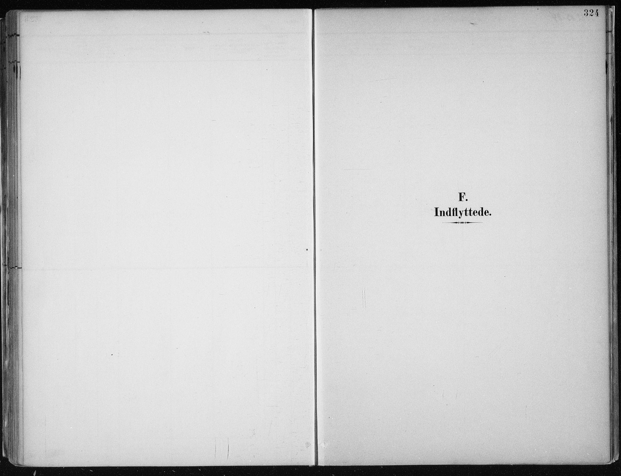 SAB, Hamre Sokneprestembete, H/Haa: Ministerialbok nr. B  1, 1882-1905, s. 324