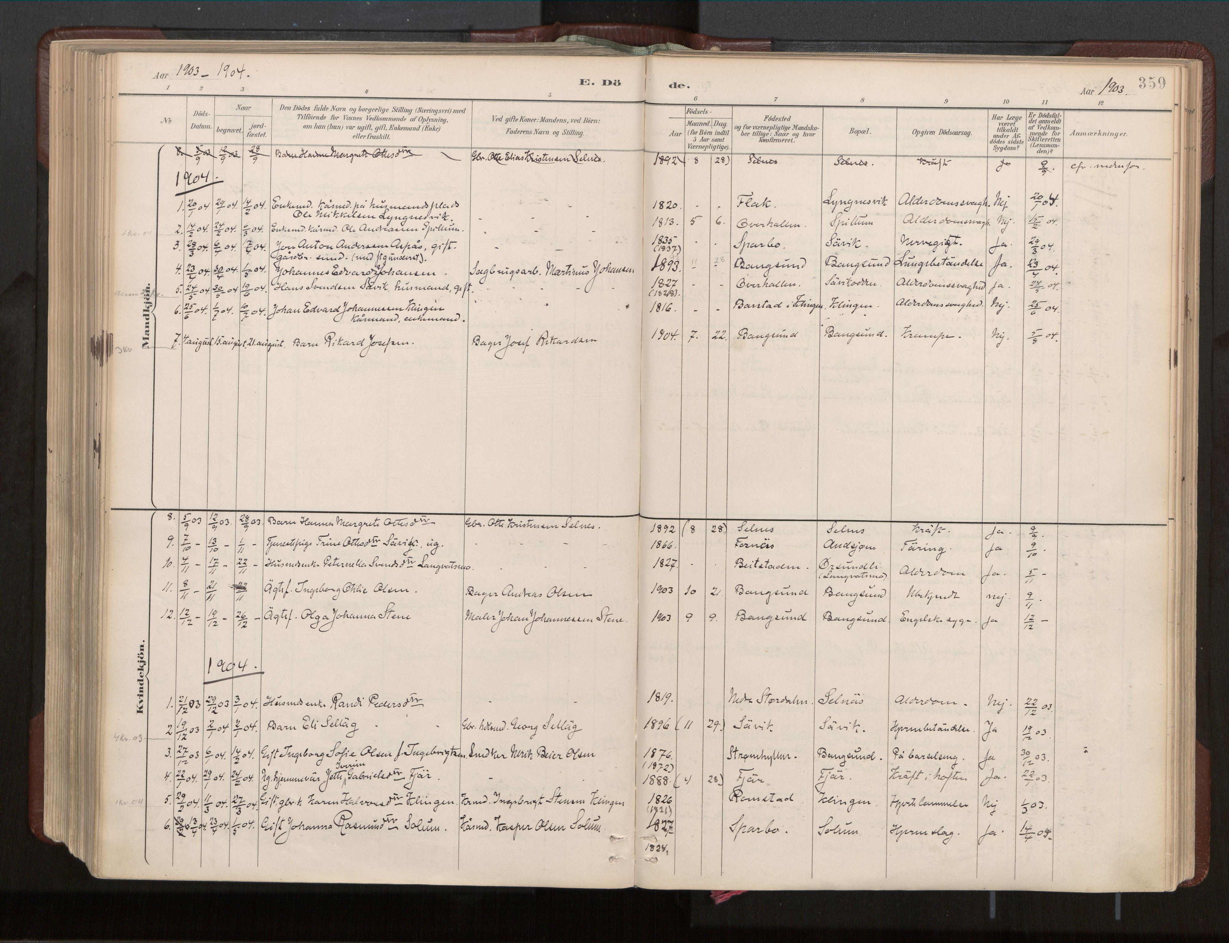 SAT, Ministerialprotokoller, klokkerbøker og fødselsregistre - Nord-Trøndelag, 770/L0589: Ministerialbok nr. 770A03, 1887-1929, s. 359