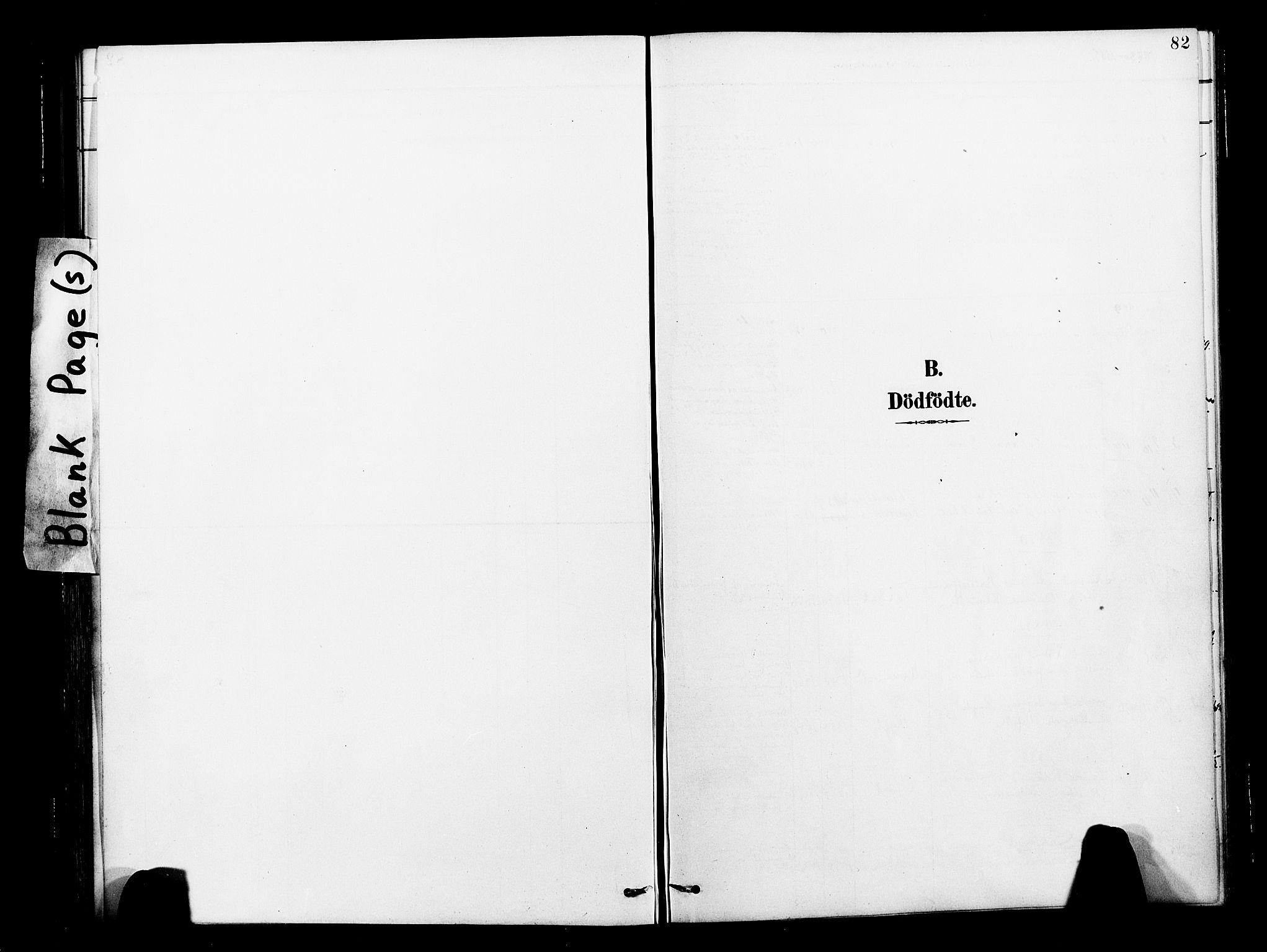 SAT, Ministerialprotokoller, klokkerbøker og fødselsregistre - Nord-Trøndelag, 713/L0121: Ministerialbok nr. 713A10, 1888-1898, s. 82