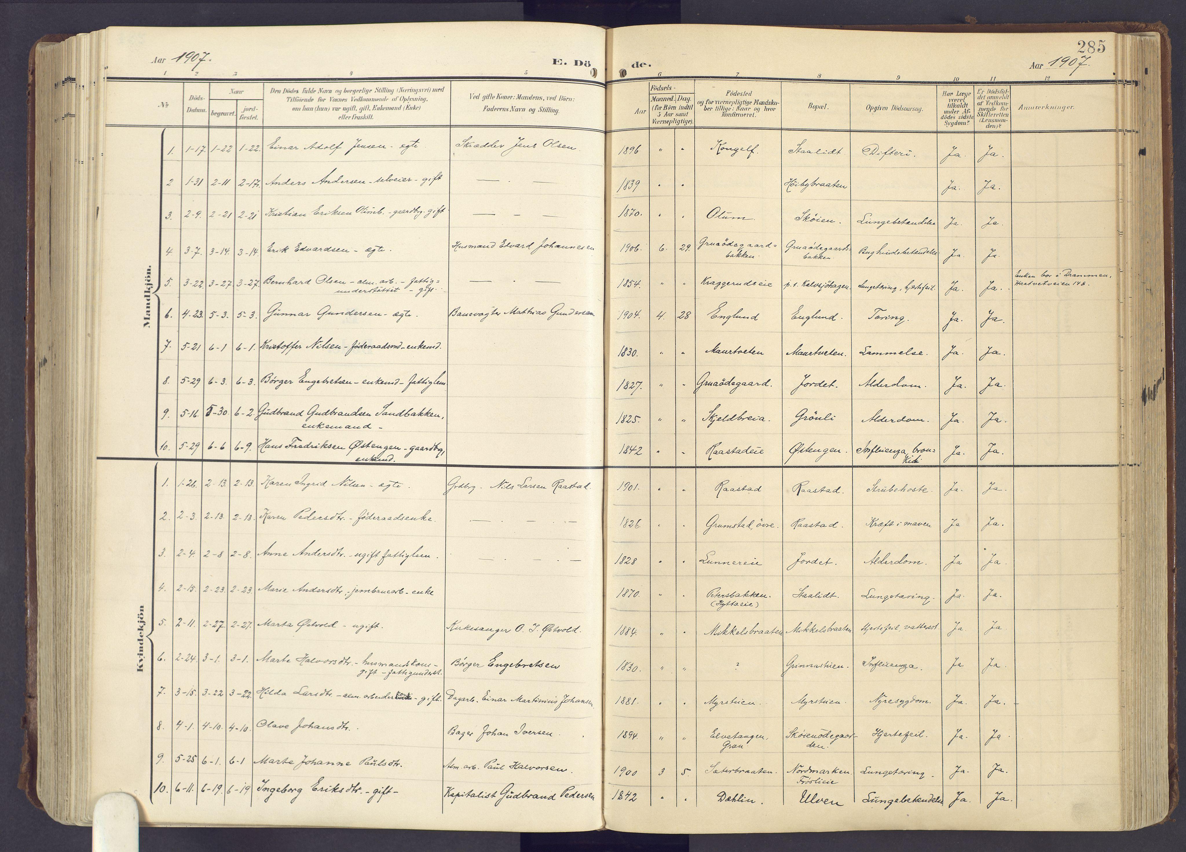 SAH, Lunner prestekontor, H/Ha/Haa/L0001: Ministerialbok nr. 1, 1907-1922, s. 285