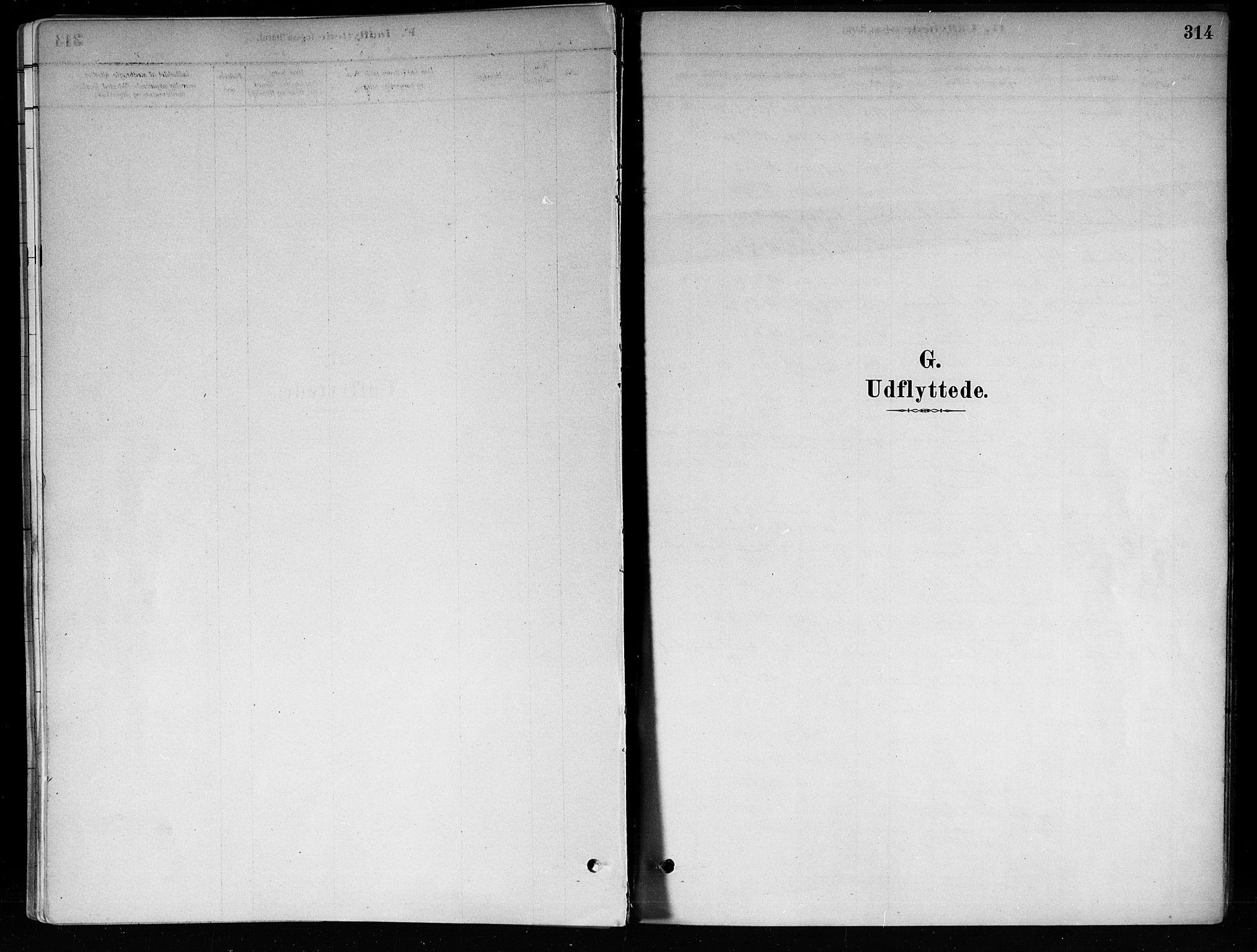 SAKO, Røyken kirkebøker, F/Fa/L0008: Ministerialbok nr. 8, 1880-1897, s. 314