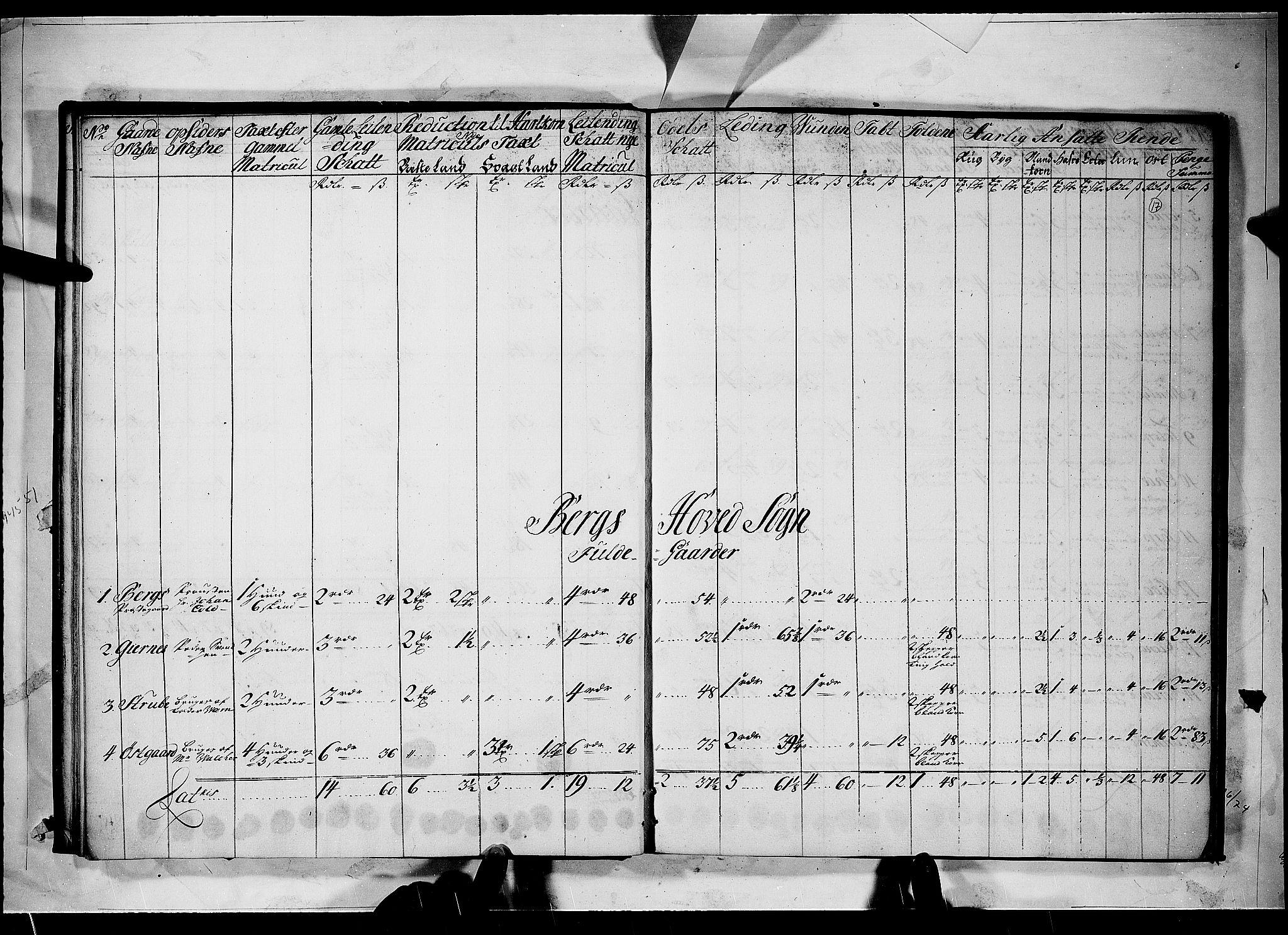 RA, Rentekammeret inntil 1814, Realistisk ordnet avdeling, N/Nb/Nbf/L0098: Idd og Marker matrikkelprotokoll, 1723, s. 16b-17a