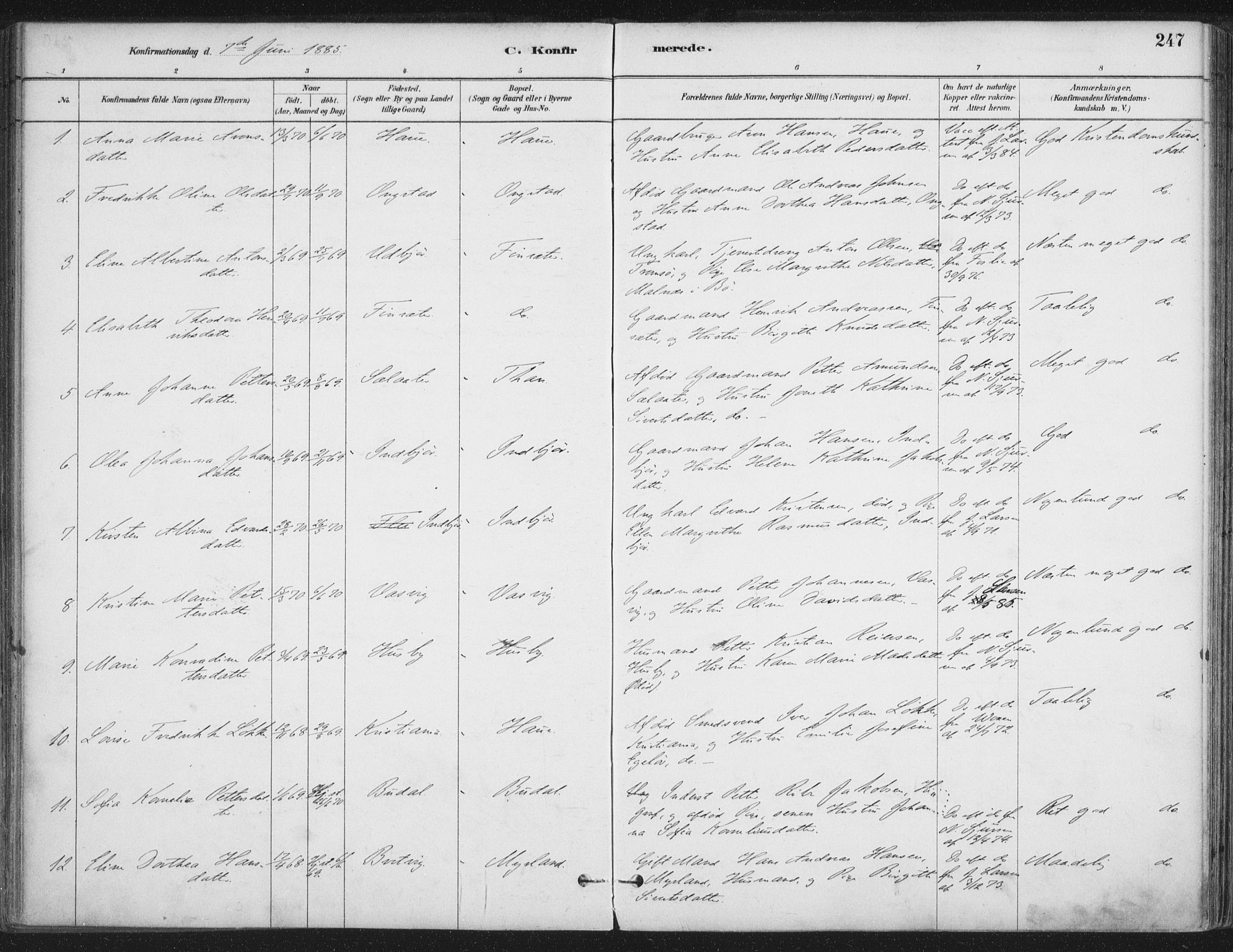 SAT, Ministerialprotokoller, klokkerbøker og fødselsregistre - Nordland, 888/L1244: Ministerialbok nr. 888A10, 1880-1890, s. 247