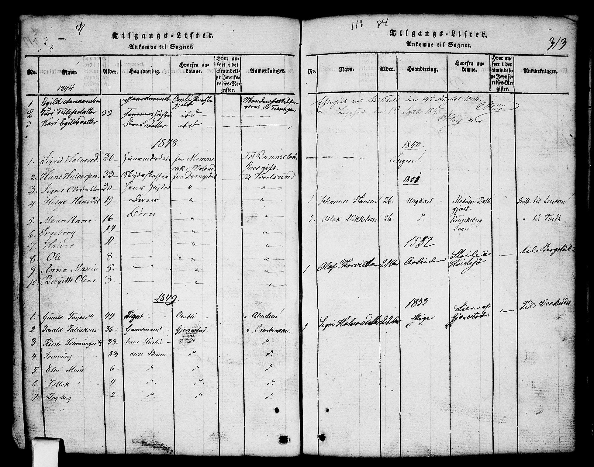 SAKO, Nissedal kirkebøker, G/Gb/L0001: Klokkerbok nr. II 1, 1814-1862, s. 313