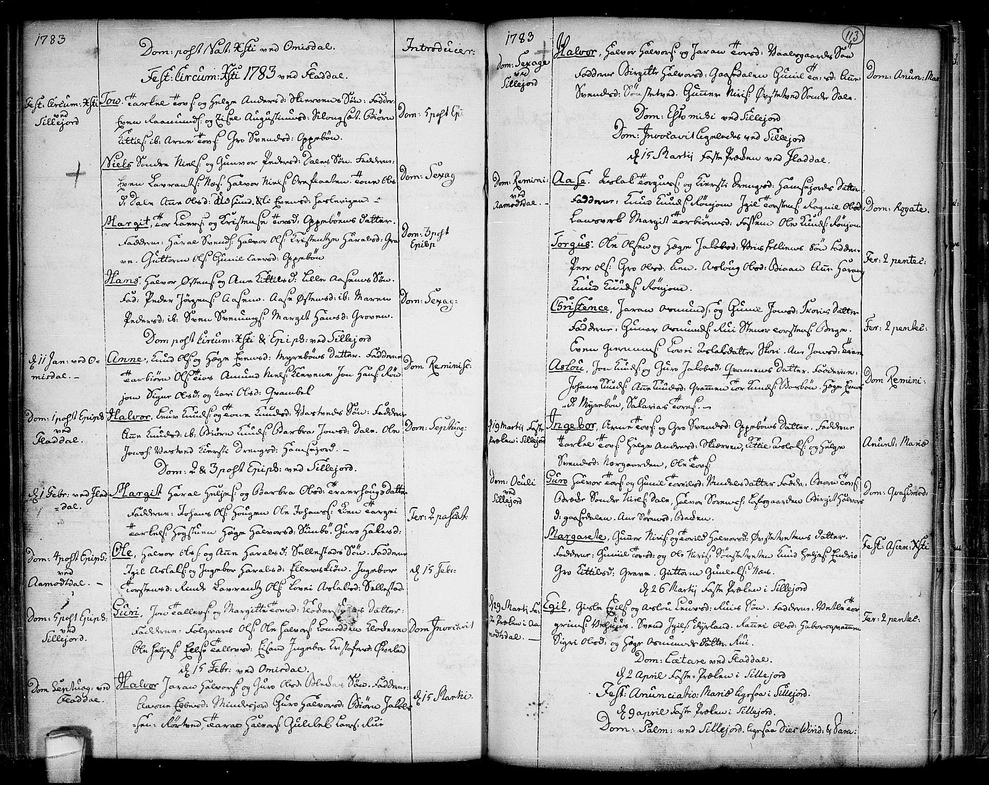 SAKO, Seljord kirkebøker, F/Fa/L0007: Ministerialbok nr. I 7, 1755-1800, s. 113