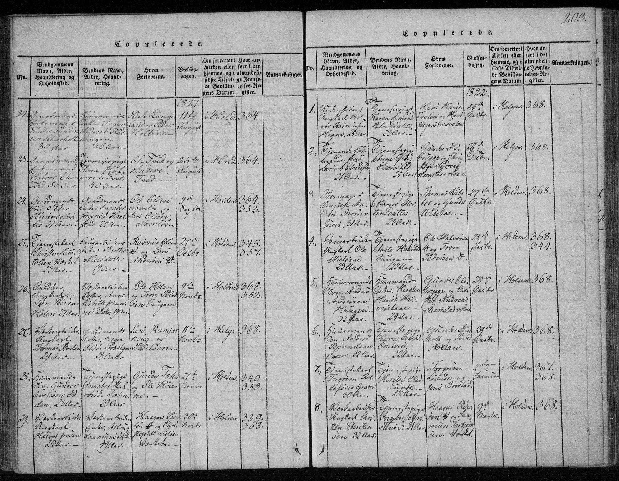 SAKO, Holla kirkebøker, F/Fa/L0003: Ministerialbok nr. 3, 1815-1830, s. 203