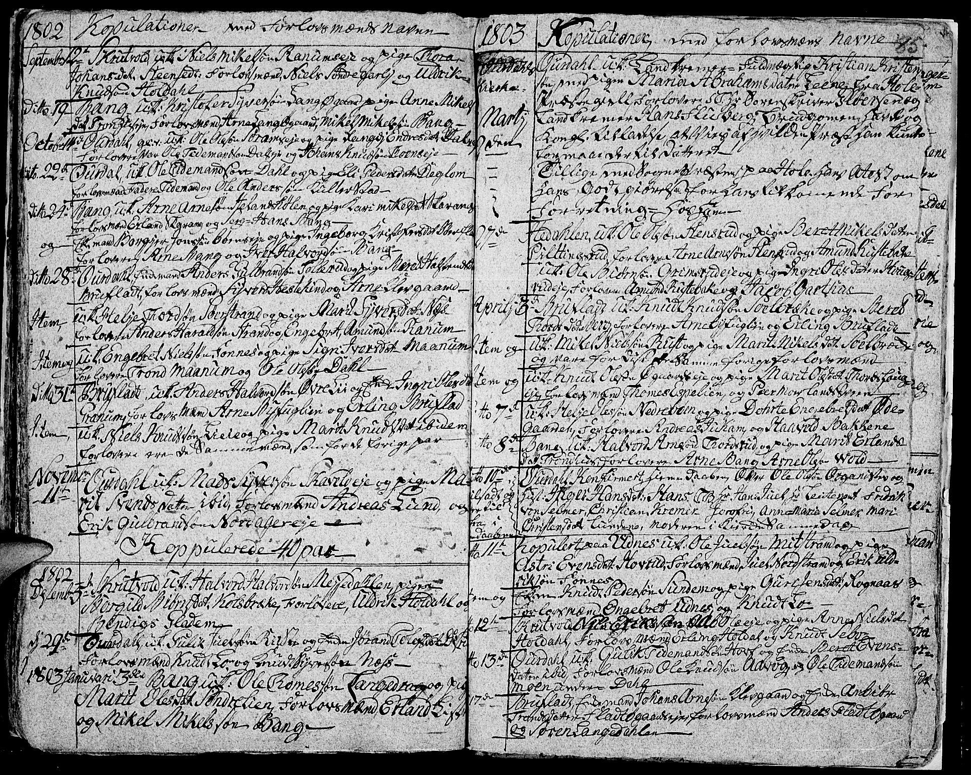 SAH, Aurdal prestekontor, Ministerialbok nr. 7, 1800-1808, s. 85